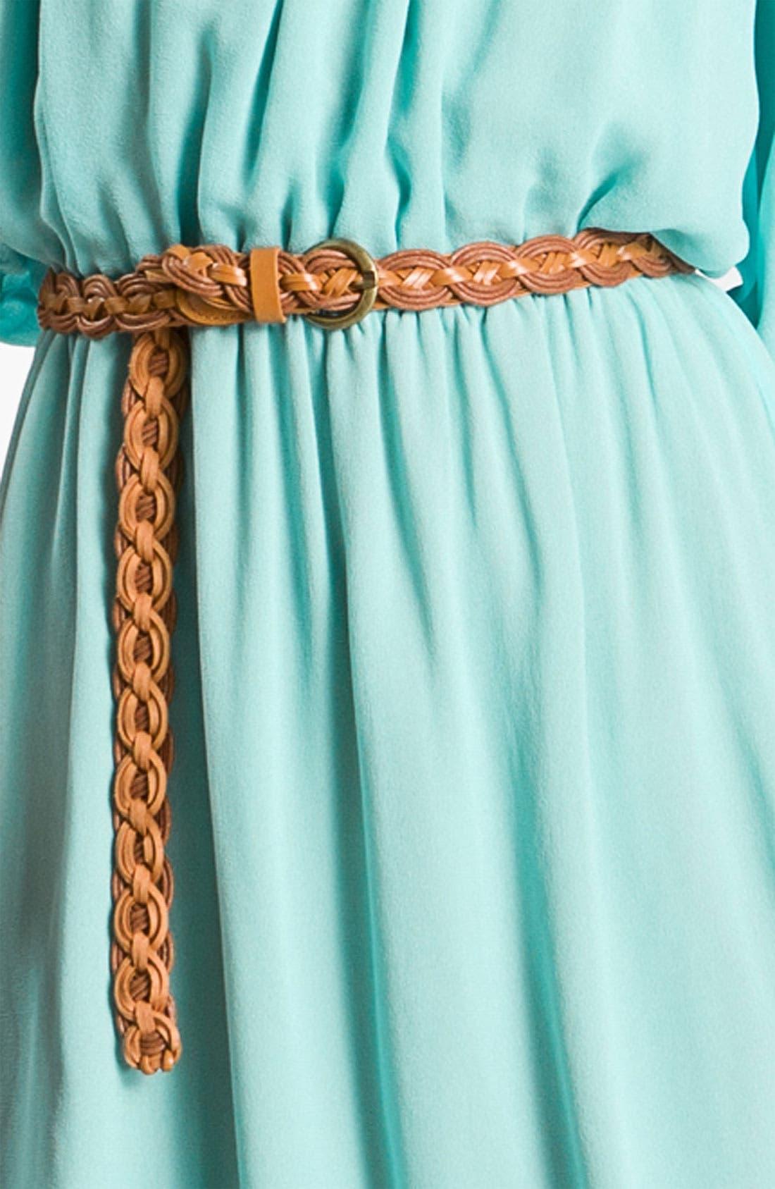 Alternate Image 3  - Sanctuary 'Martinique' Gathered Chiffon Dress