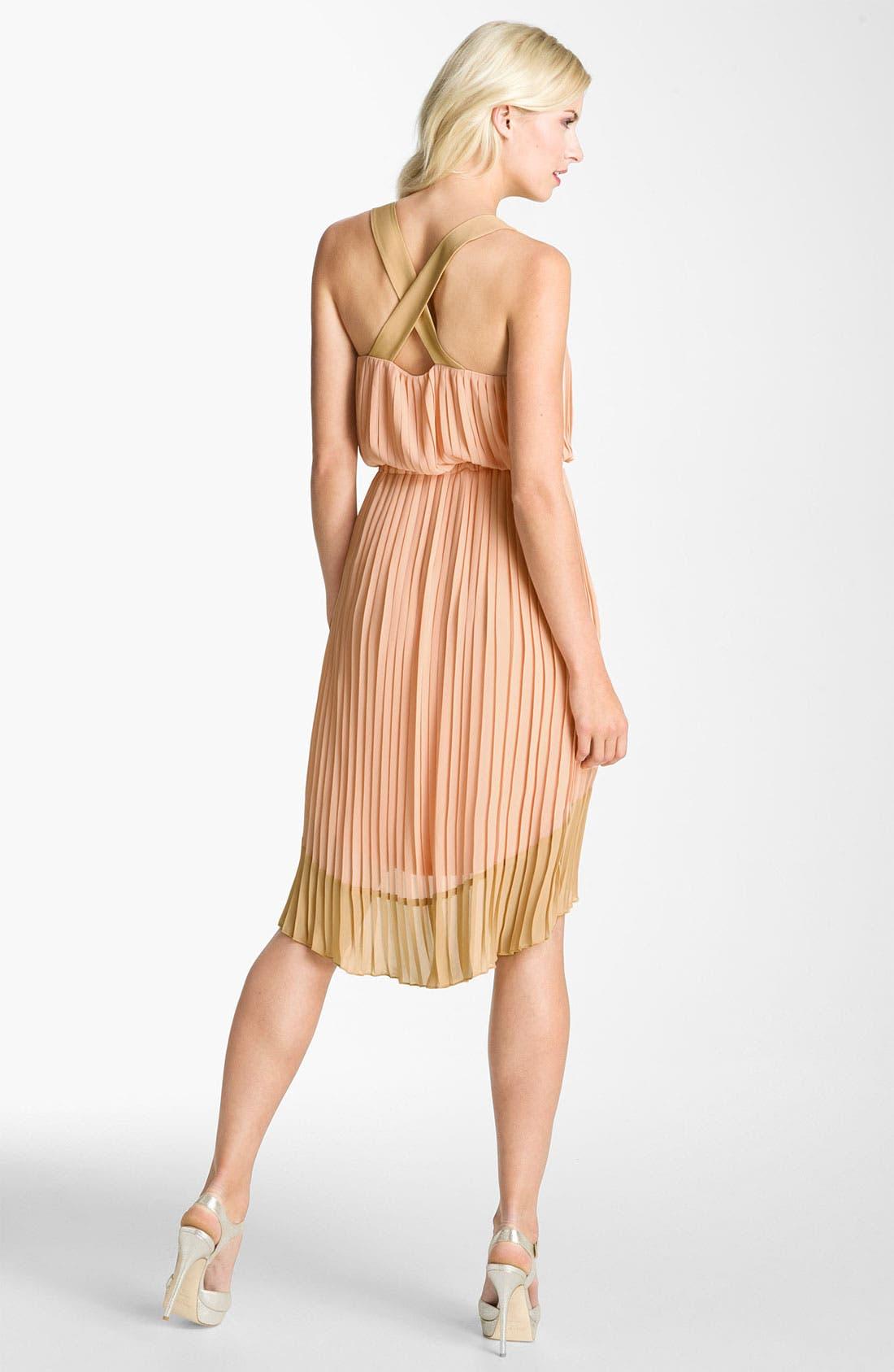 Alternate Image 2  - Jessica Simpson Pleated Chiffon Dress