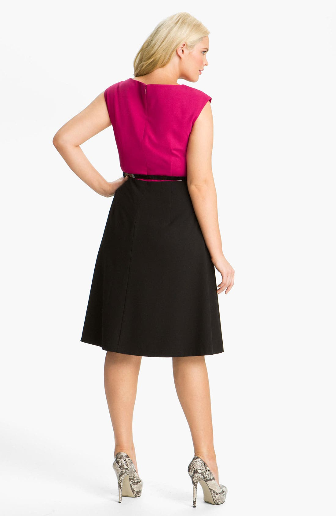 Alternate Image 2  - Calvin Klein Belted Two Tone A-Line Dress (Plus)