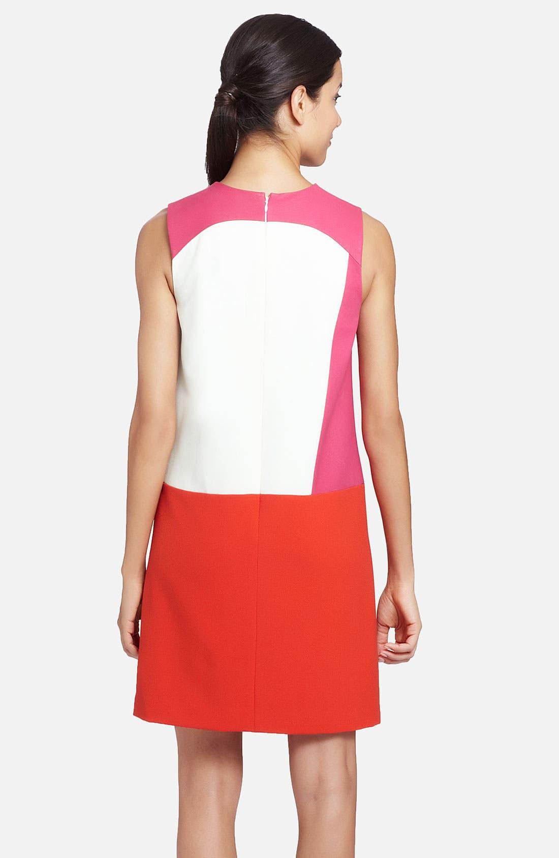 Alternate Image 2  - Cynthia Steffe 'Rory' Sleeveless Colorblock Shift Dress