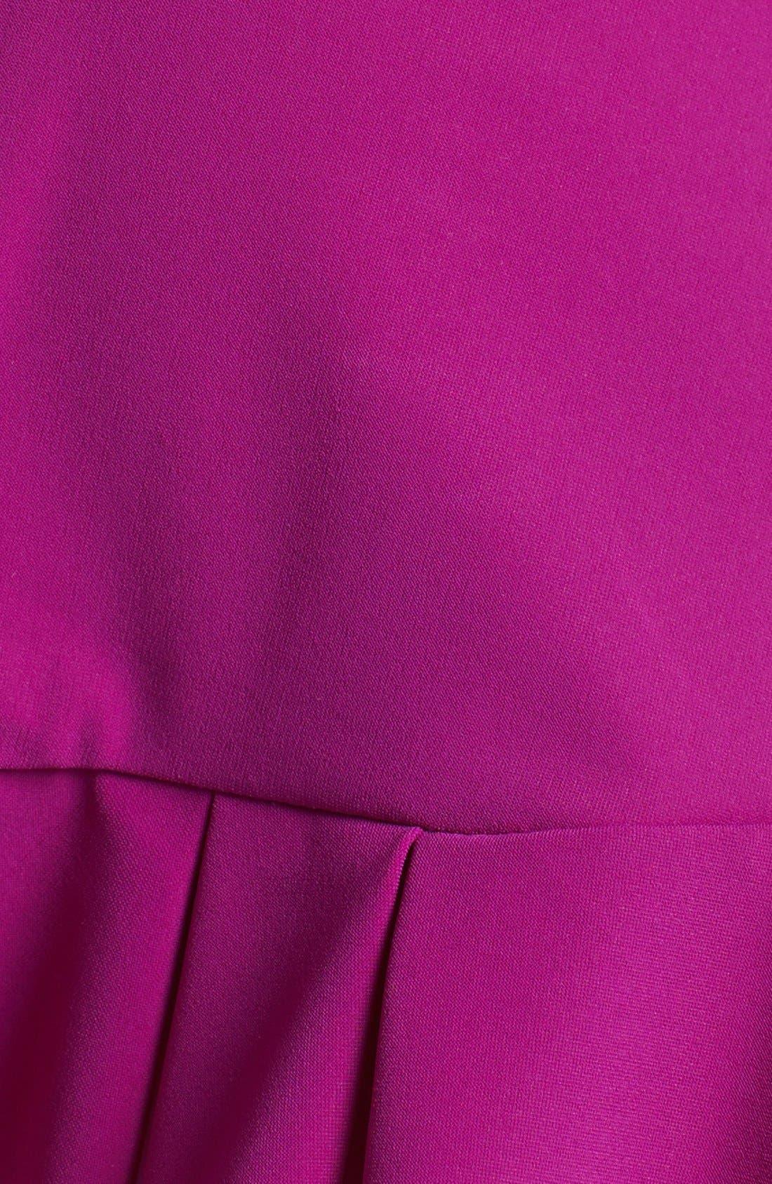 Alternate Image 5  - Profile by Gottex 'Starlet' Skirted Bikini Bottoms