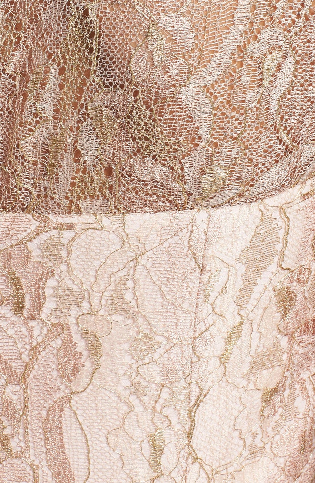 'Remma' Metallic Lace Overlay Fit & Flare Dress,                             Alternate thumbnail 4, color,                             Nude Pink