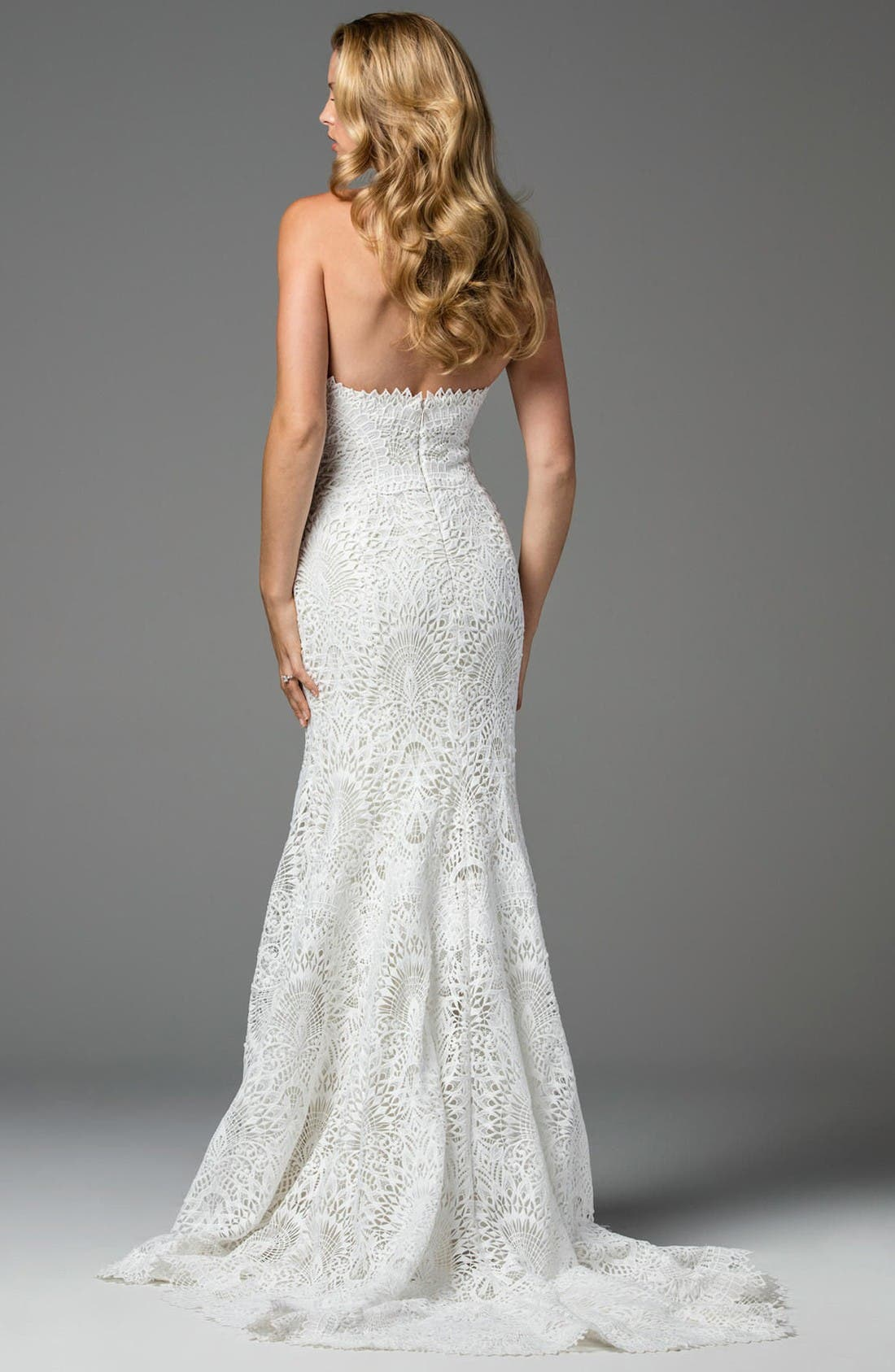 Alternate Image 2  - Watters Taylor Strapless Lace Mermaid Gown
