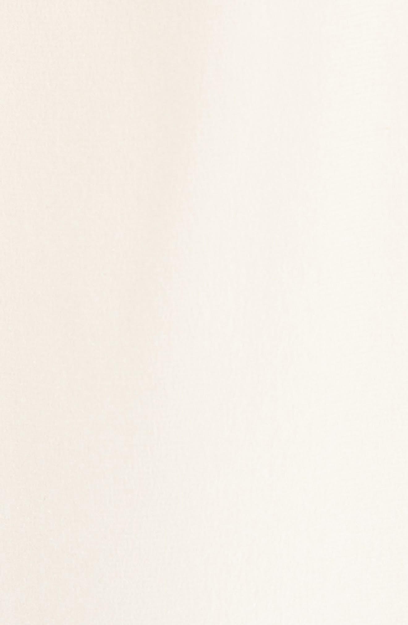 Alternate Image 5  - Joie Merles Embroidered Silk Top