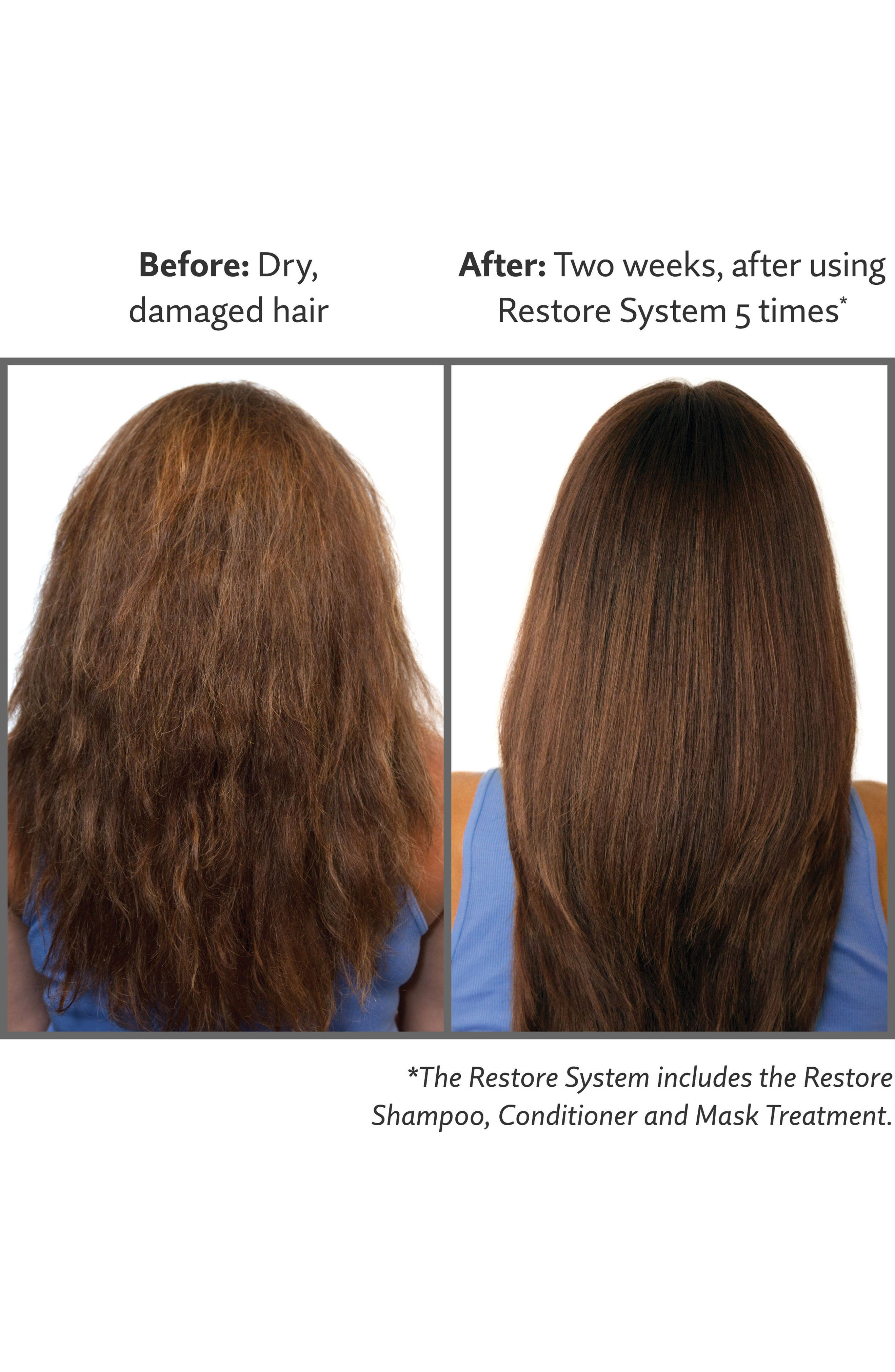 Alternate Image 2  - Living proof® Restore Mask Treatment