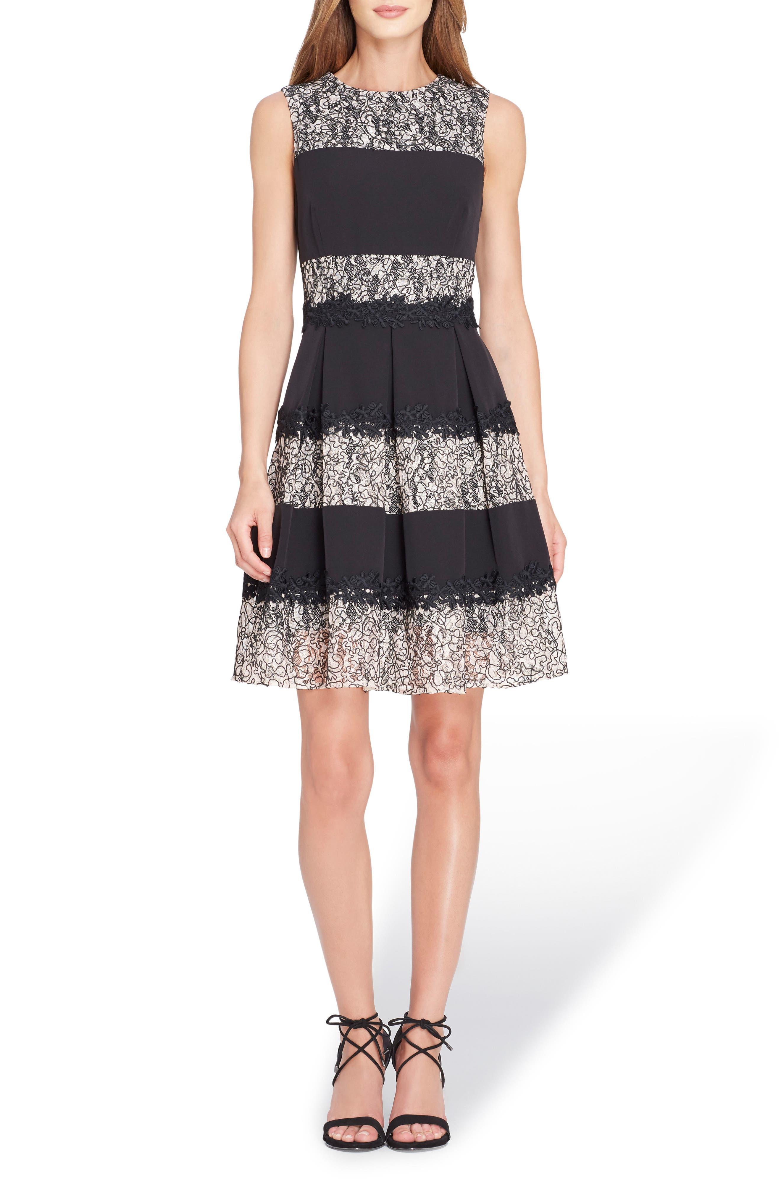 Stripe Lace Fit & Flare Dress,                         Main,                         color, Black/ Blush