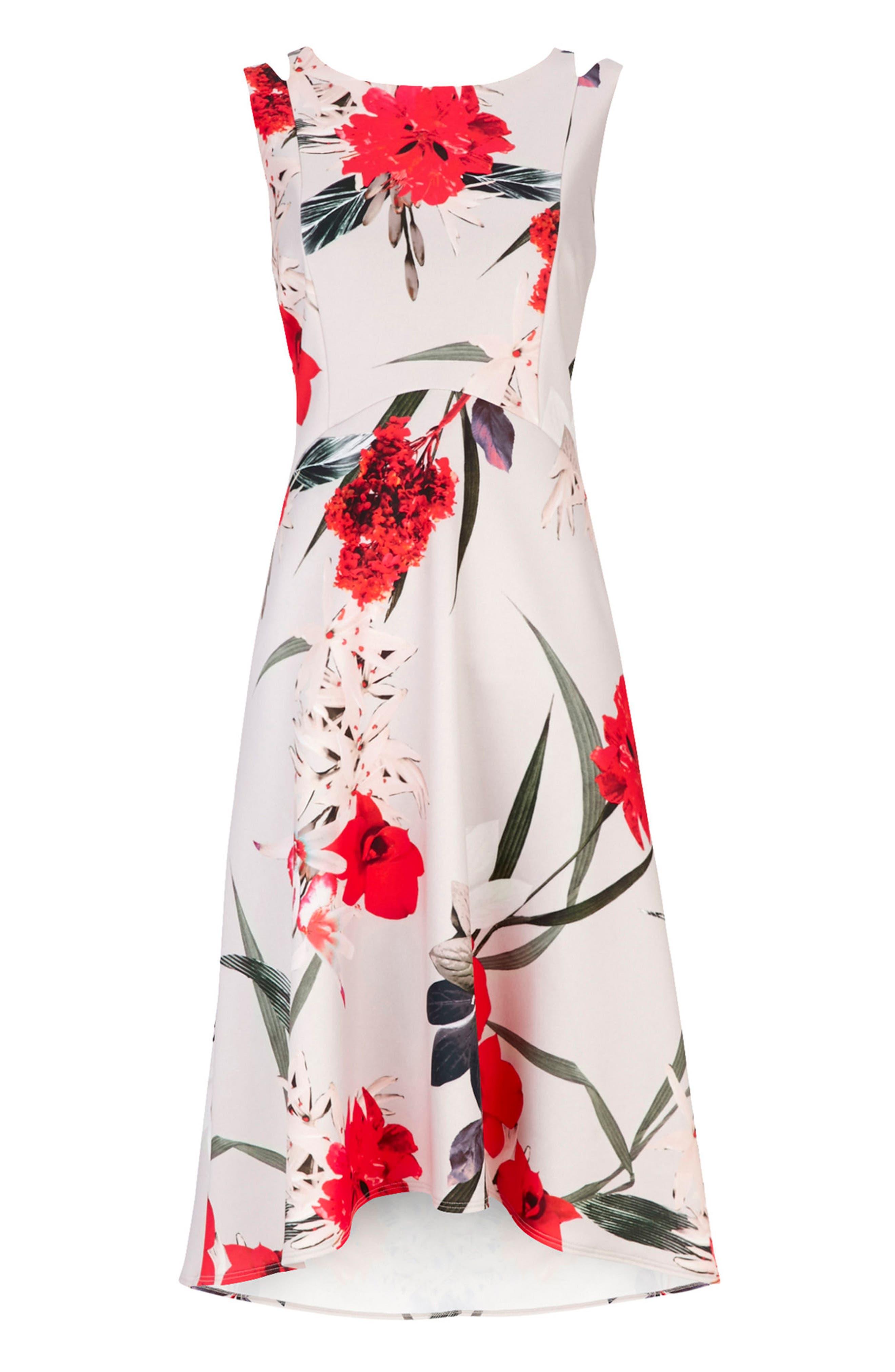 Alternate Image 5  - Wallis Sahara Bloom High/Low Dress