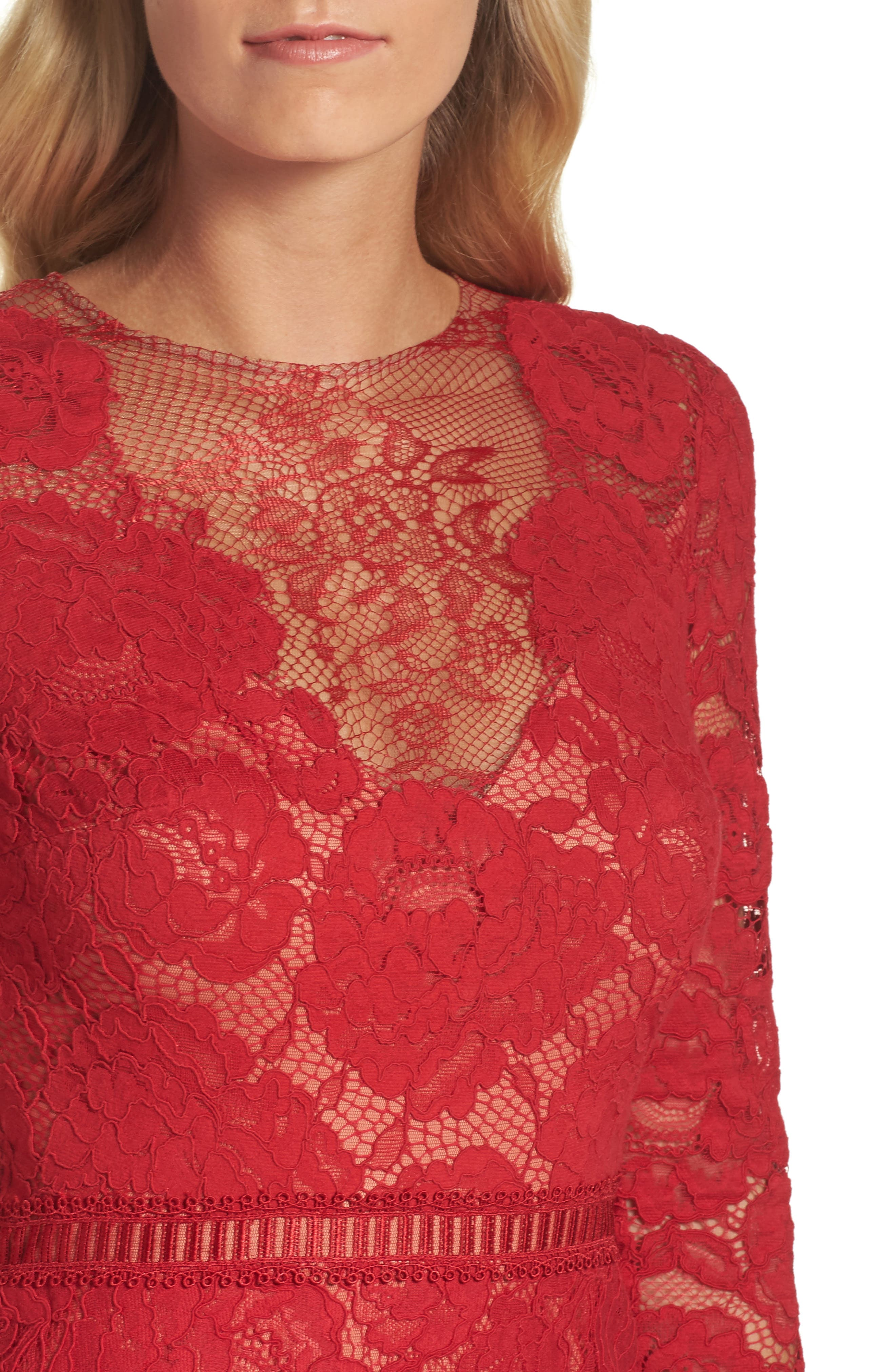 Alternate Image 4  - Tadashi Shoji Corded Lace Gown