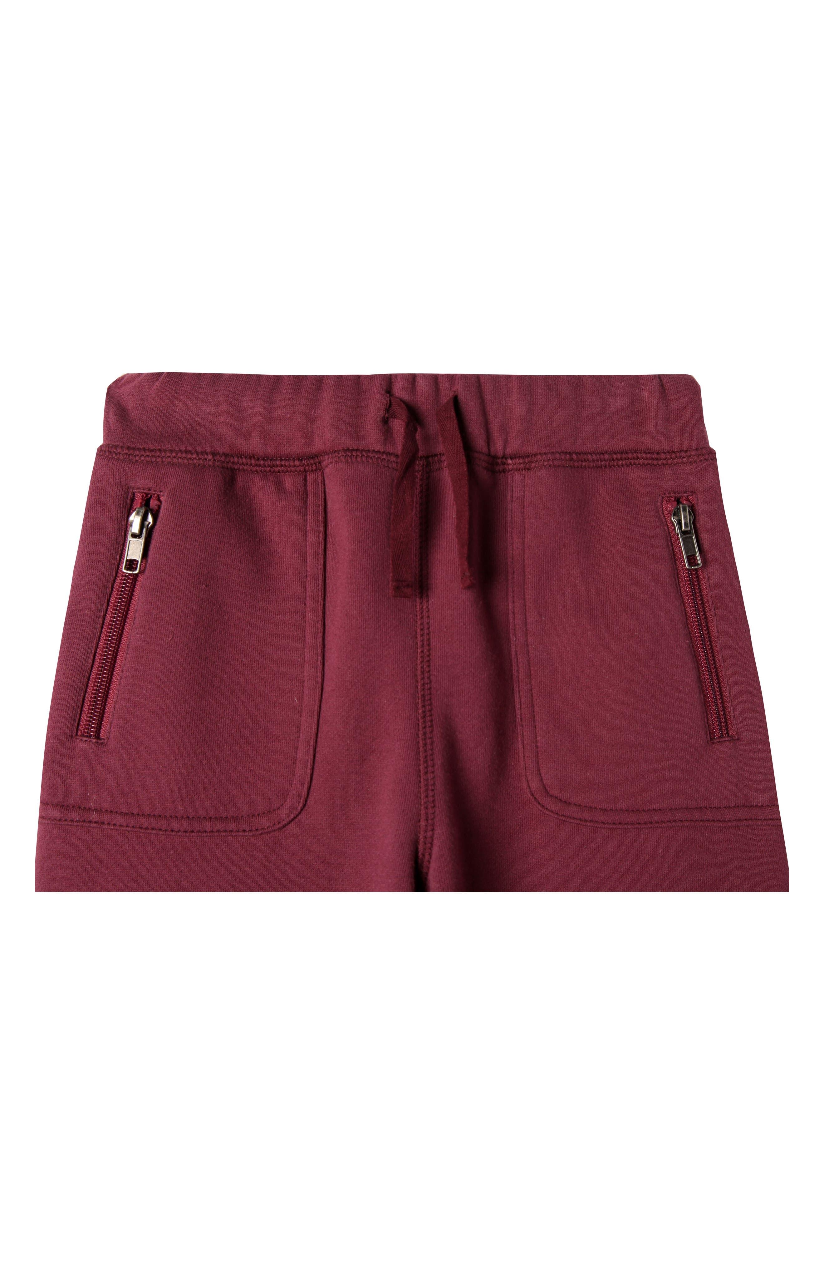 Mercer Jogger Pants,                             Alternate thumbnail 3, color,                             Andora