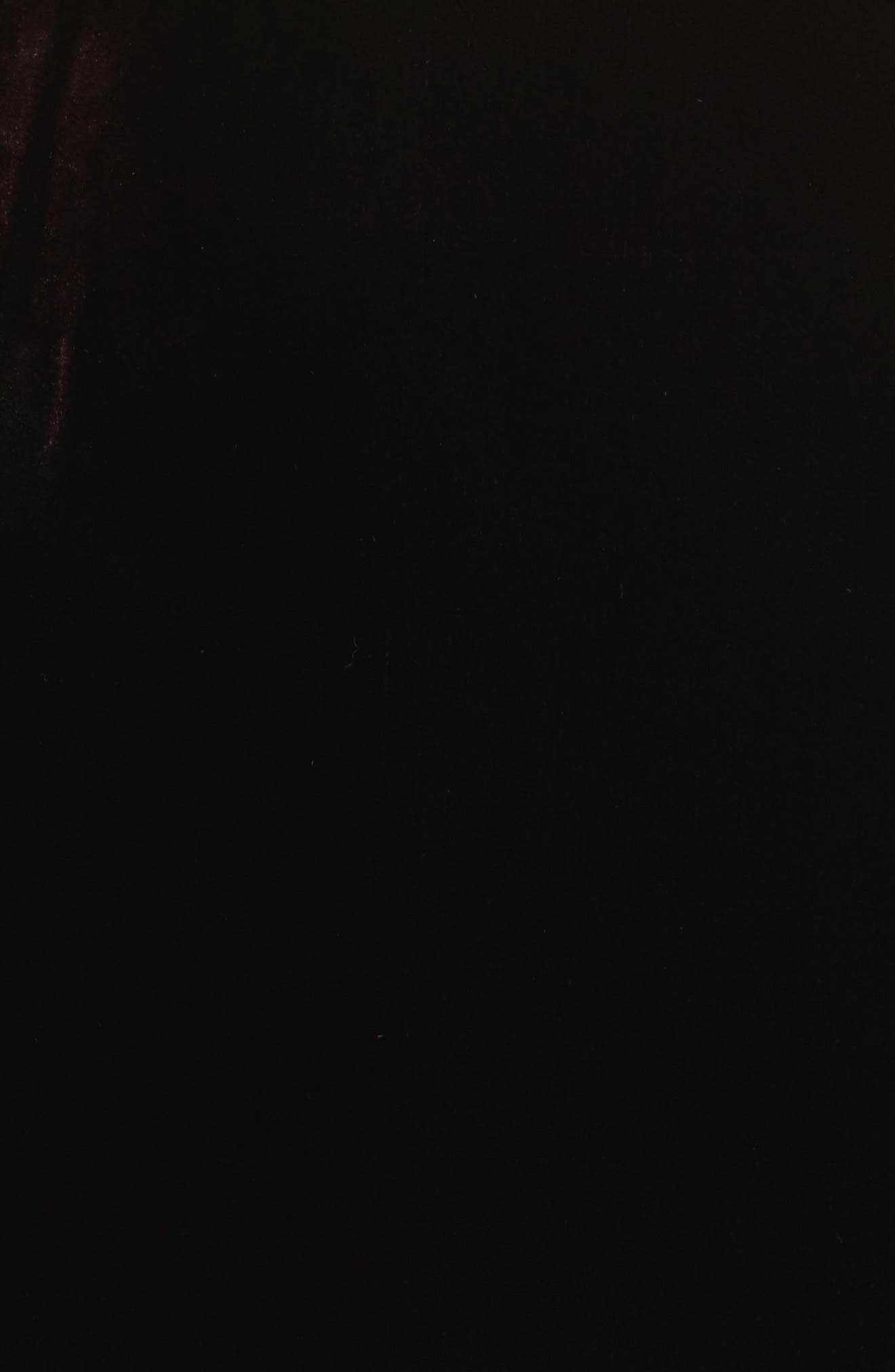 Ruffle Bodice Velvet Dress,                             Alternate thumbnail 5, color,                             Wine