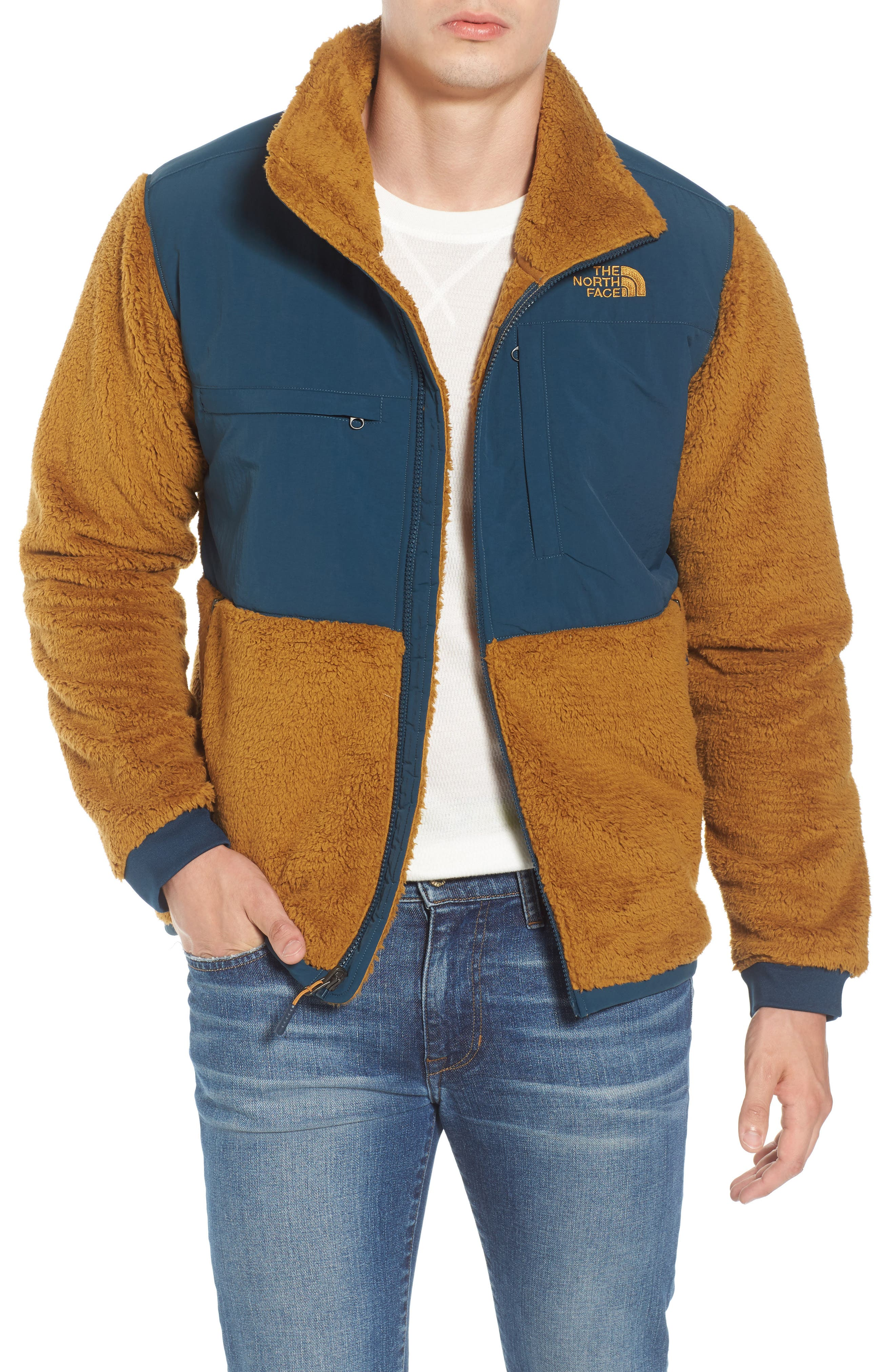 Alternate Image 1 Selected - The North Face Novelty Denali Jacket