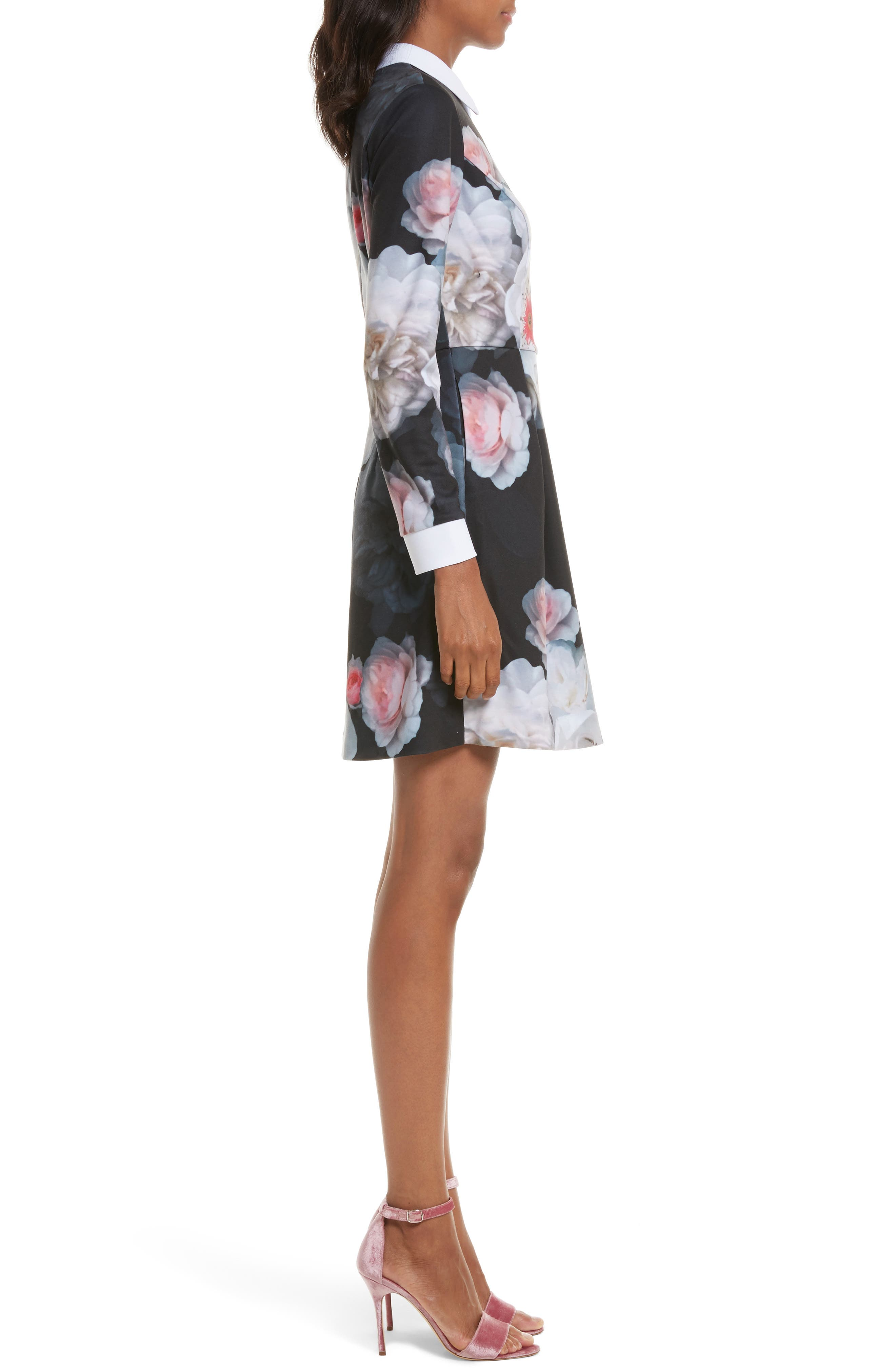 Alternate Image 3  - Ted Baker London Kaleesa Chelsea Flower Collar Dress
