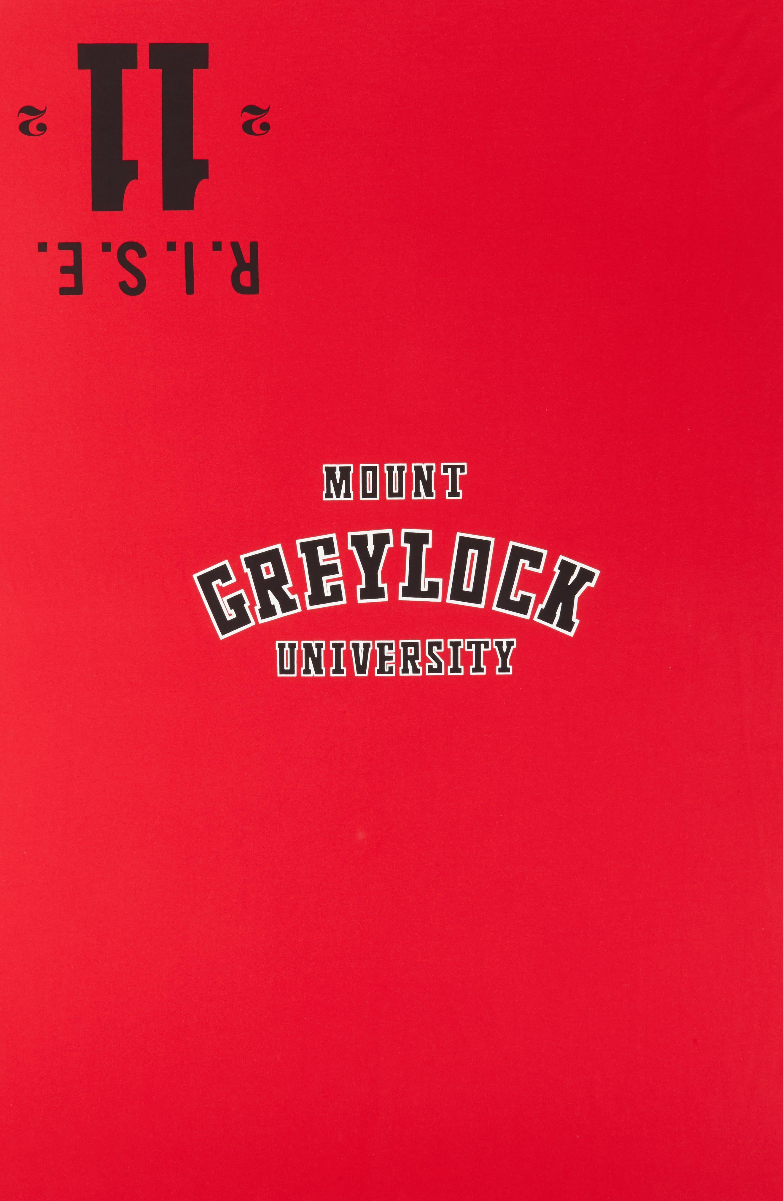 Calvin Klein Mount Greylock Throw,                             Alternate thumbnail 2, color,                             Red