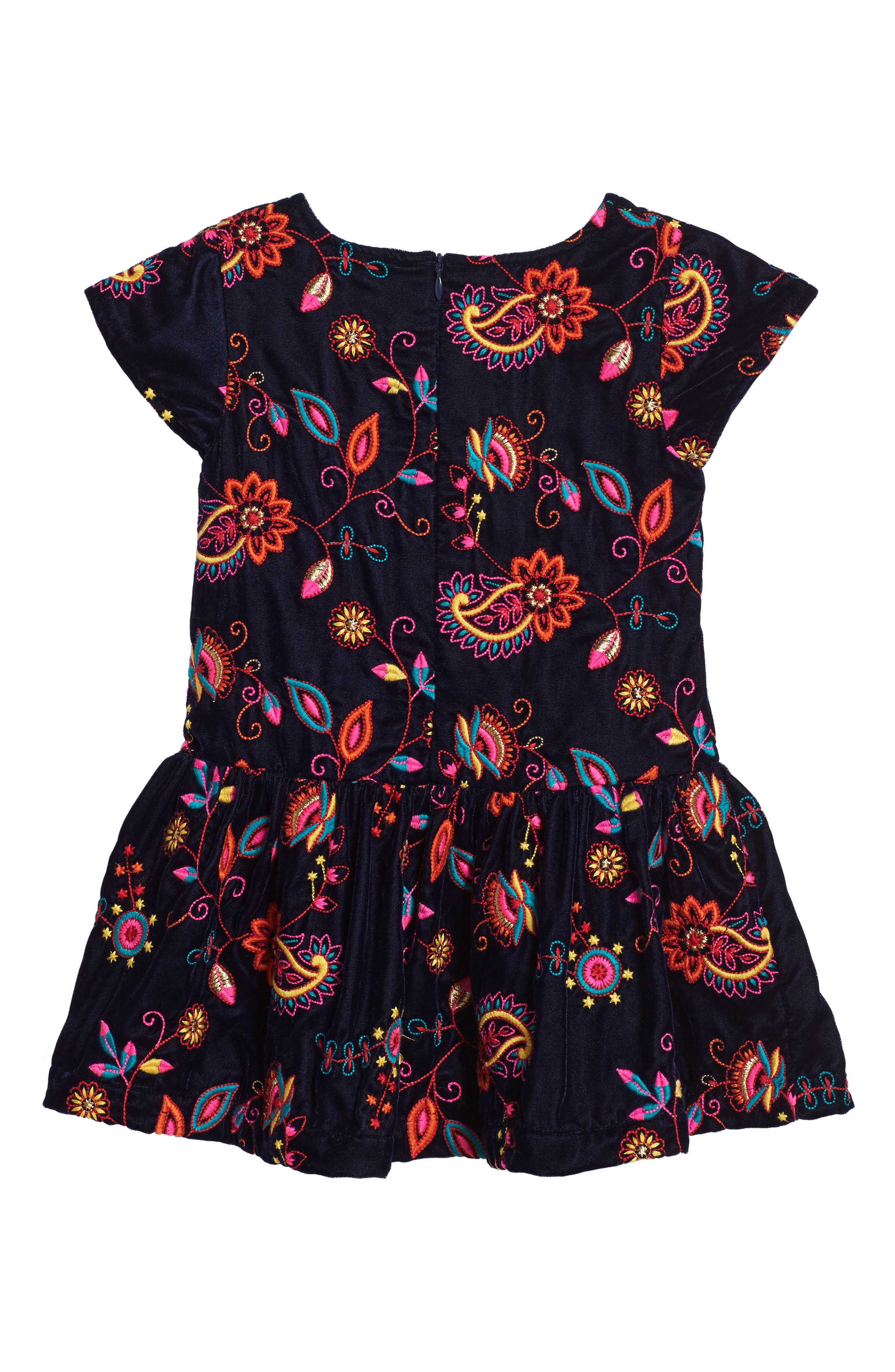 Kara Embroidered Velvet Dress,                             Alternate thumbnail 2, color,                             Navy