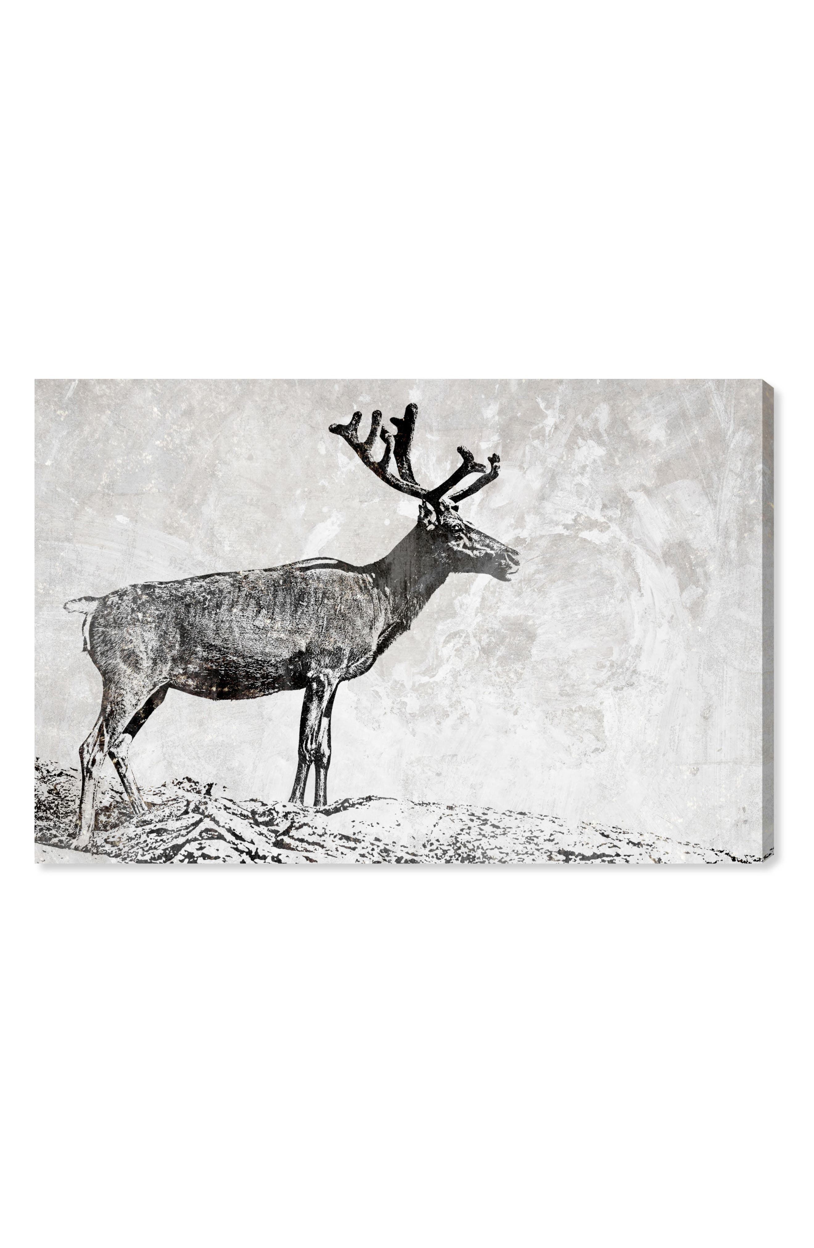 In the Woods Canvas Wall Art,                             Main thumbnail 1, color,                             Grey