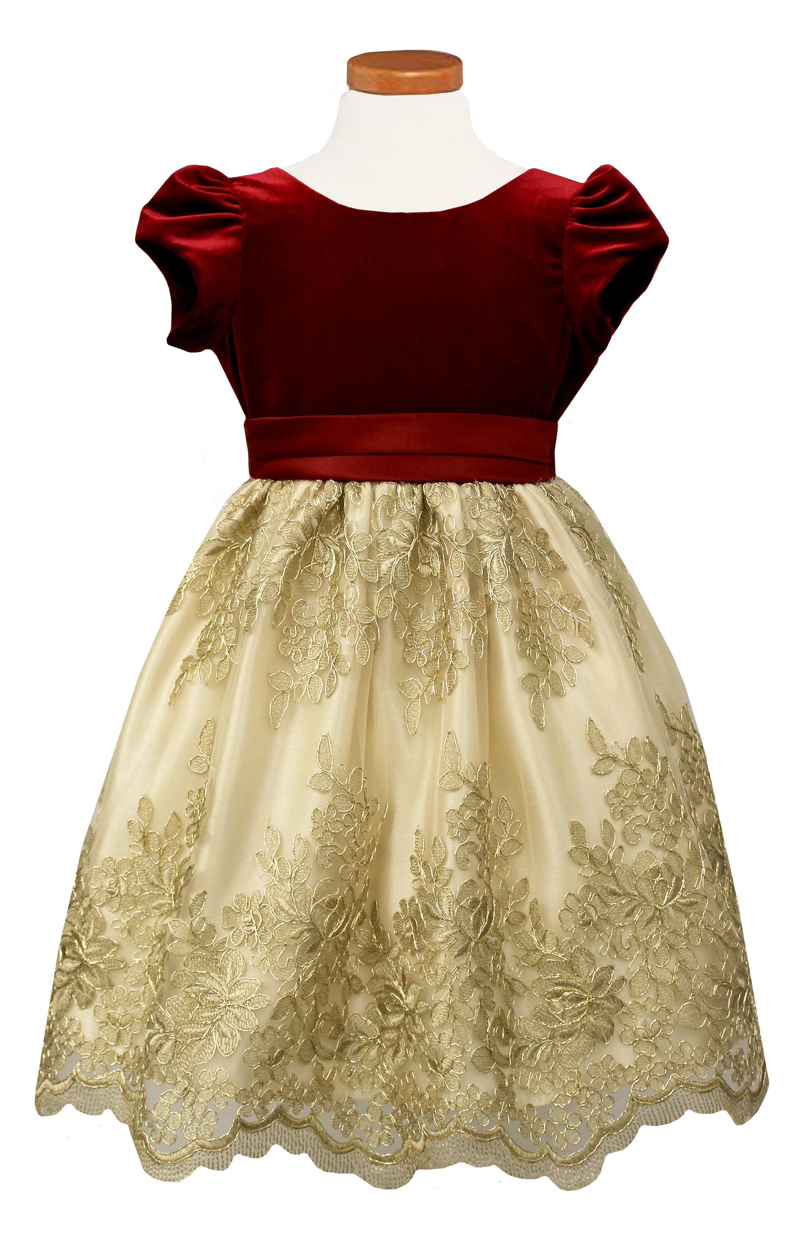 Floral Embroidered Party Dress,                             Main thumbnail 1, color,                             Red/ Gold