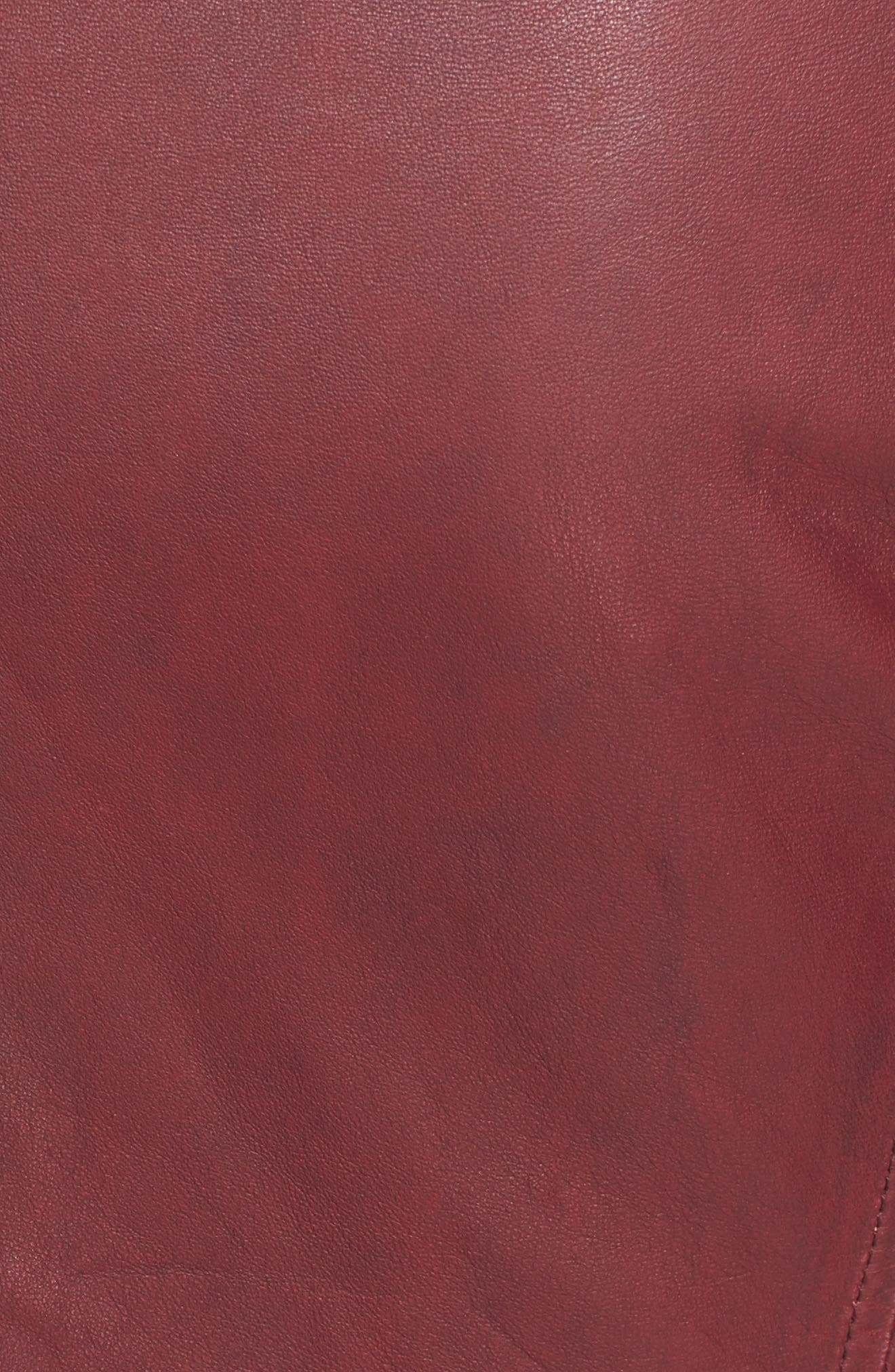 Alternate Image 5  - IRO Leather Moto Jacket