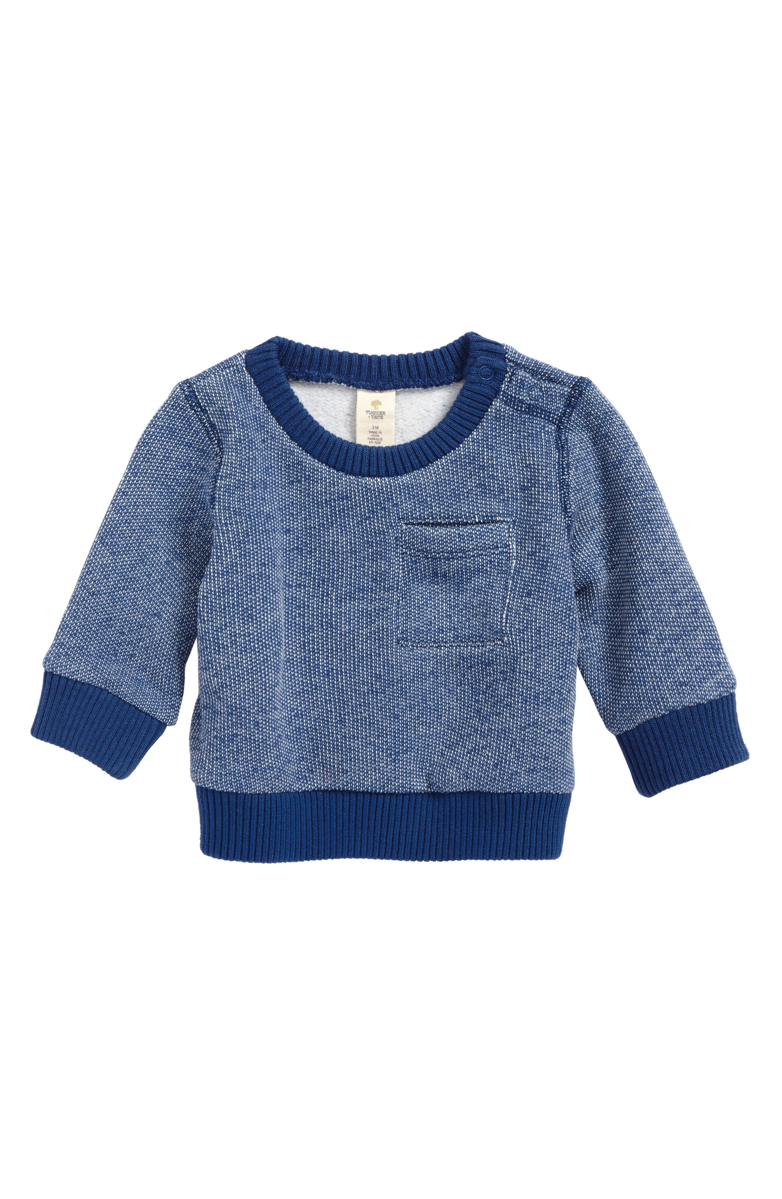 Brushed Fleece Sweatshirt,                         Main,                         color, Blue Cendre