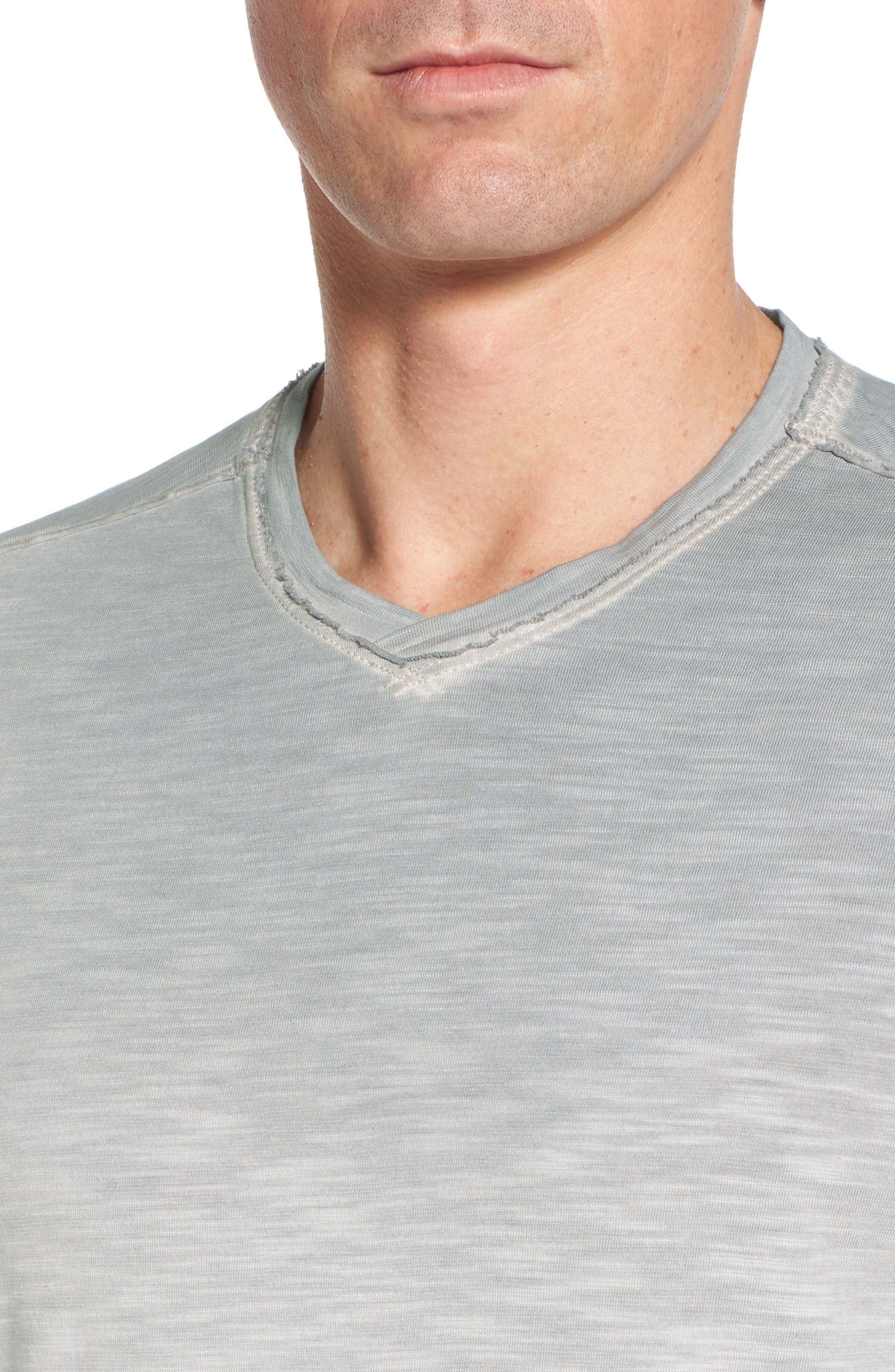 Suncoast Shores V-Neck T-Shirt,                             Alternate thumbnail 4, color,                             Bala Shark