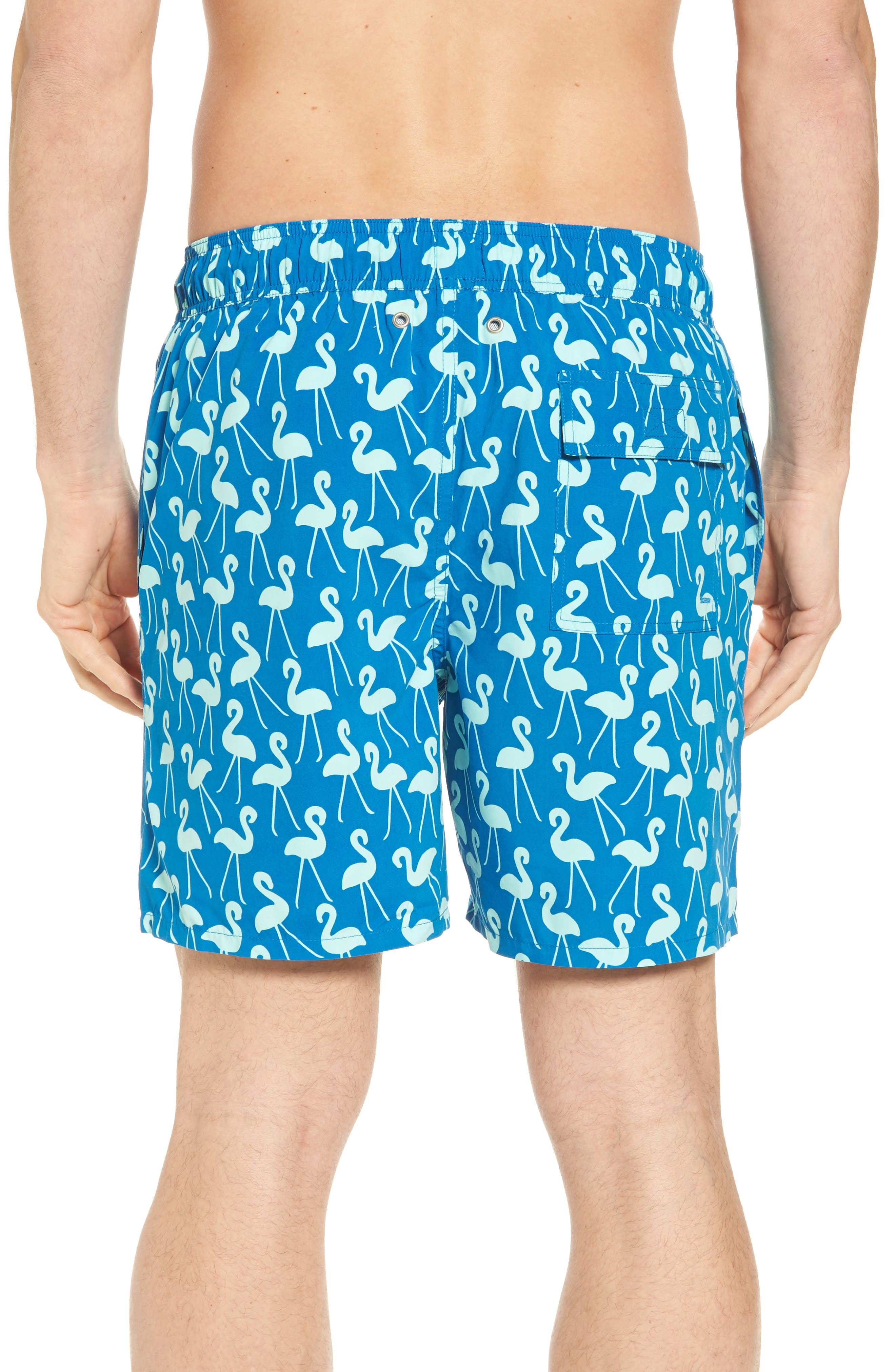 Flamingo Print Swim Trunks,                             Alternate thumbnail 2, color,                             Sky Blue