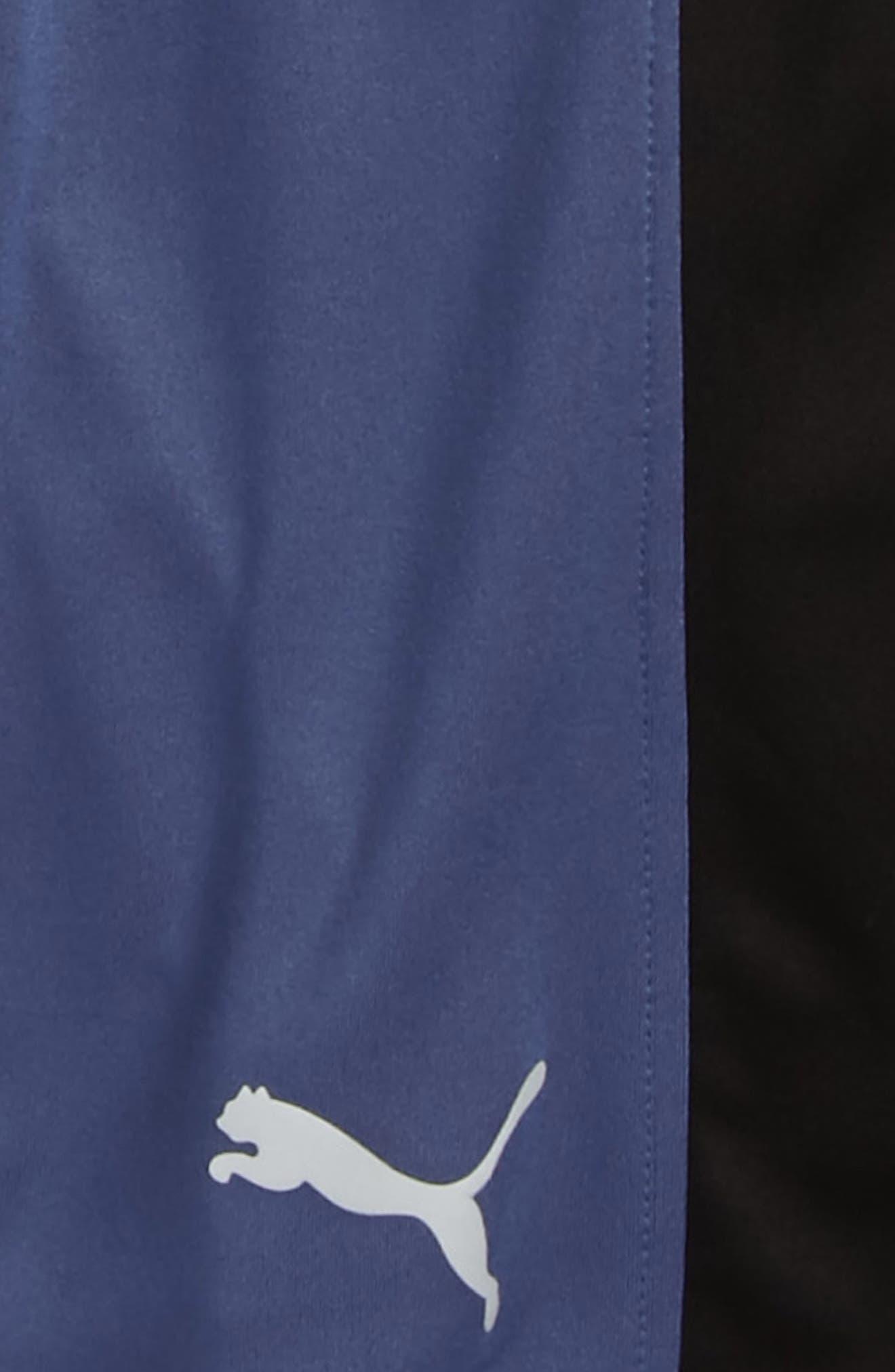 Colorblock Perforated Shorts,                             Alternate thumbnail 2, color,                             Blue Indigo
