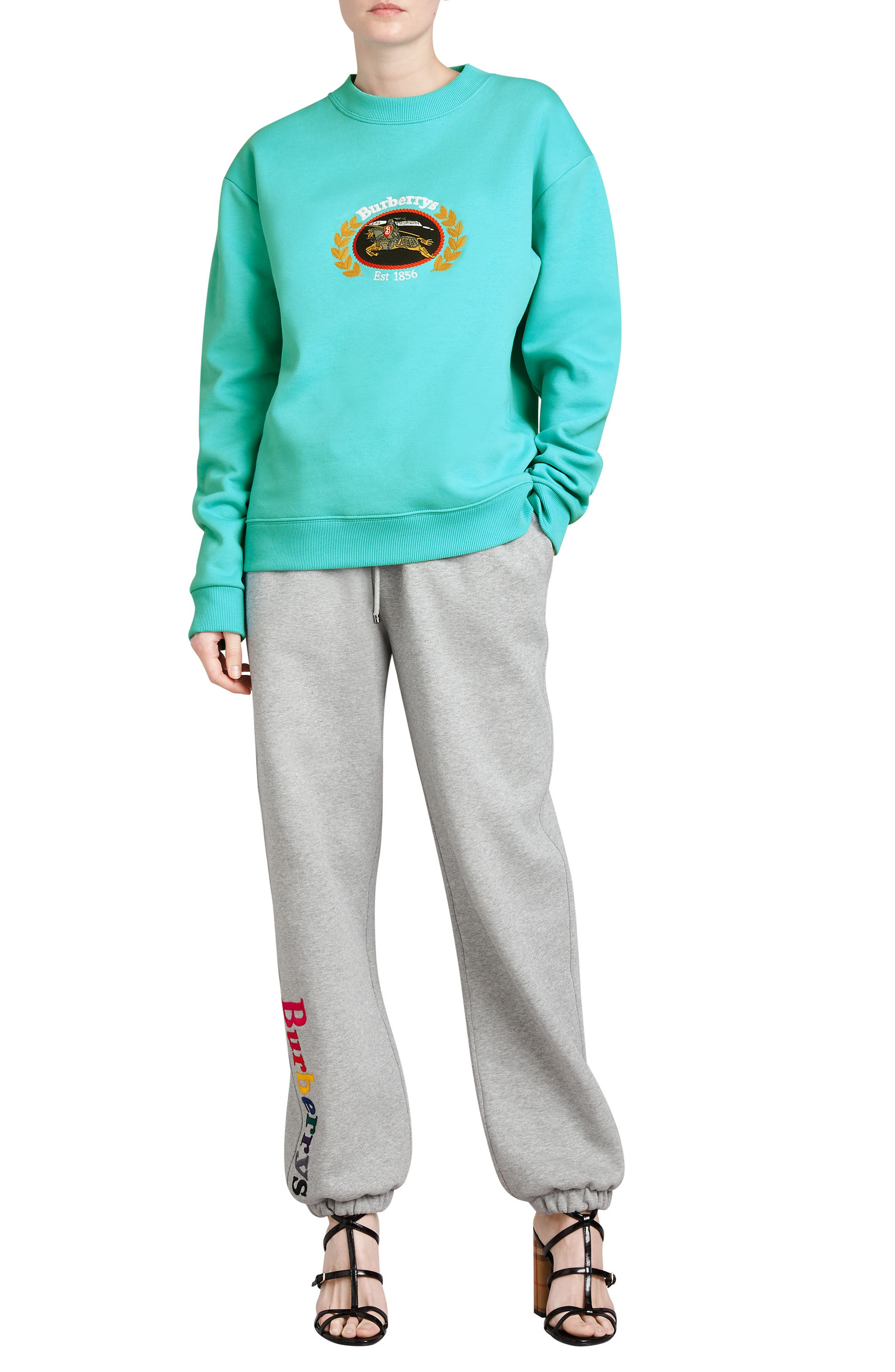 Vintage Crest Sweatshirt,                             Alternate thumbnail 5, color,                             Aqua