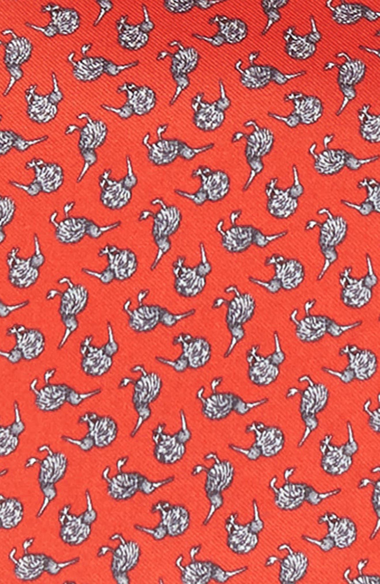 Cheeky Kiwi Silk Pocket Square,                             Alternate thumbnail 3, color,                             Red