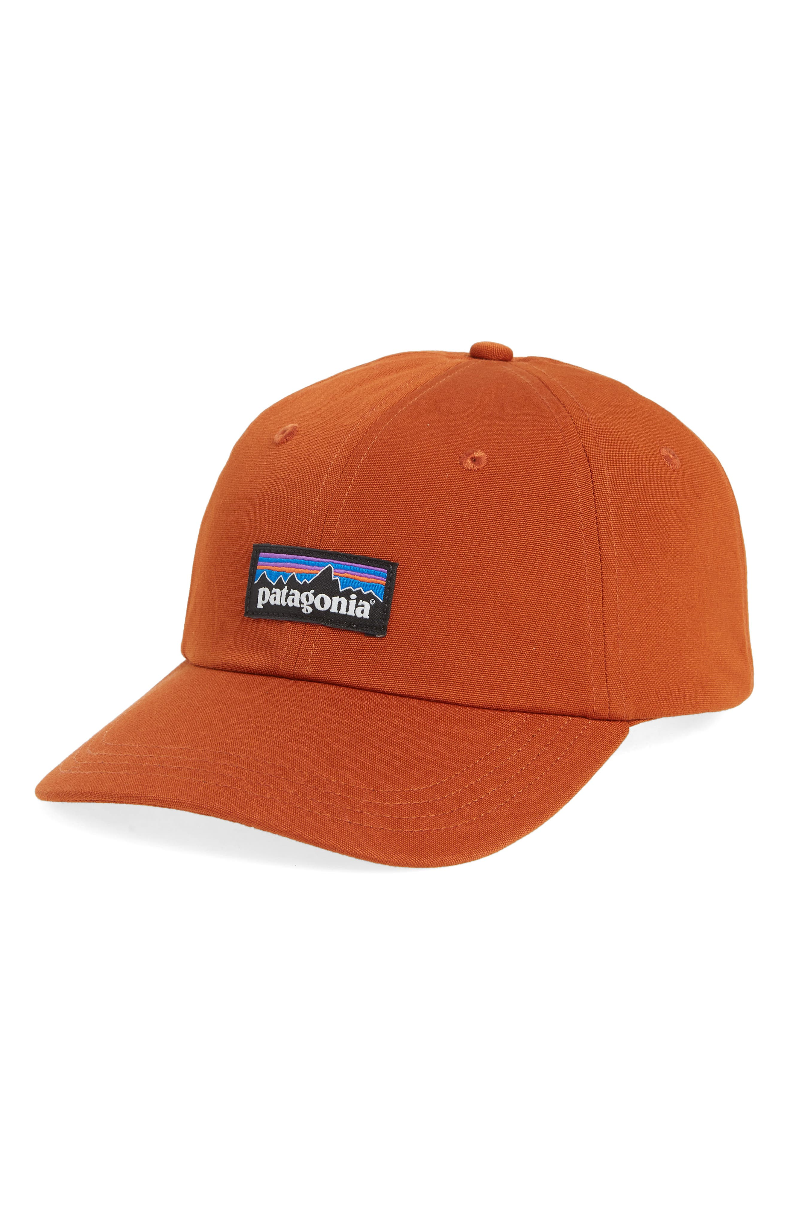 Patagonia P6 Label Trade Cap