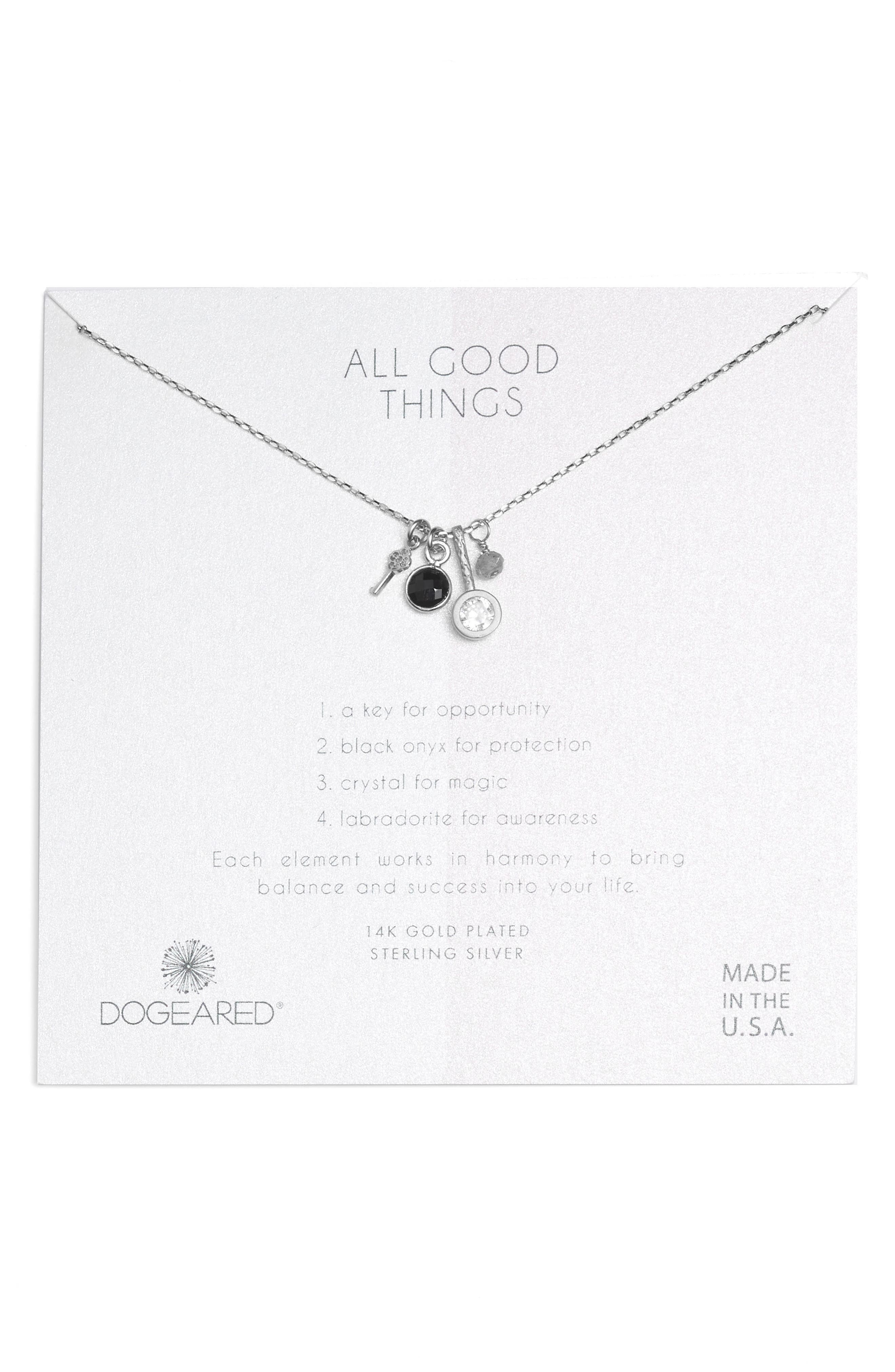 All Good Things Onyx Necklace,                         Main,                         color, Silver