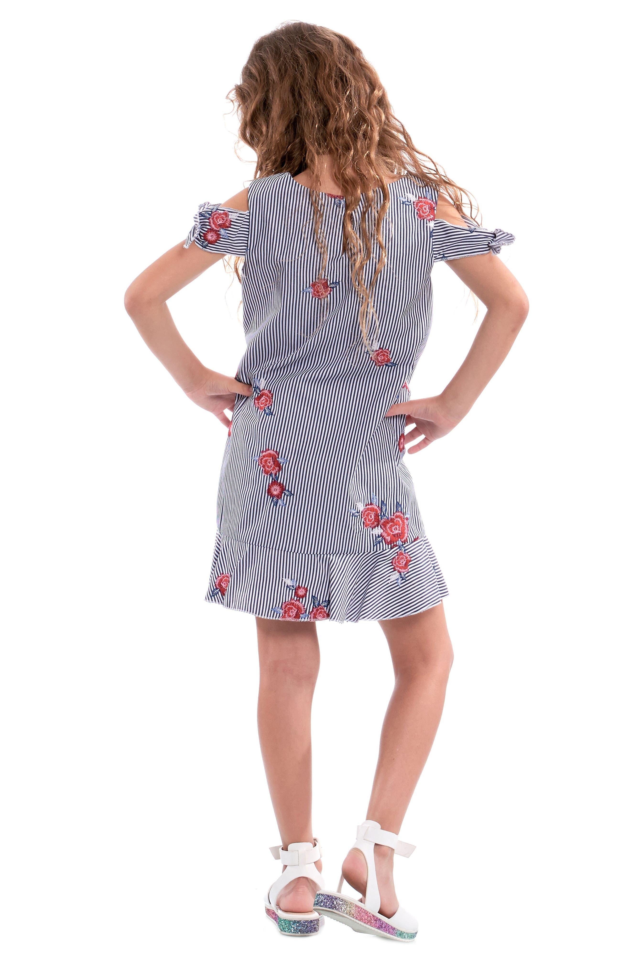 Embroidered Stripe Dress,                             Alternate thumbnail 5, color,                             Navy Multi