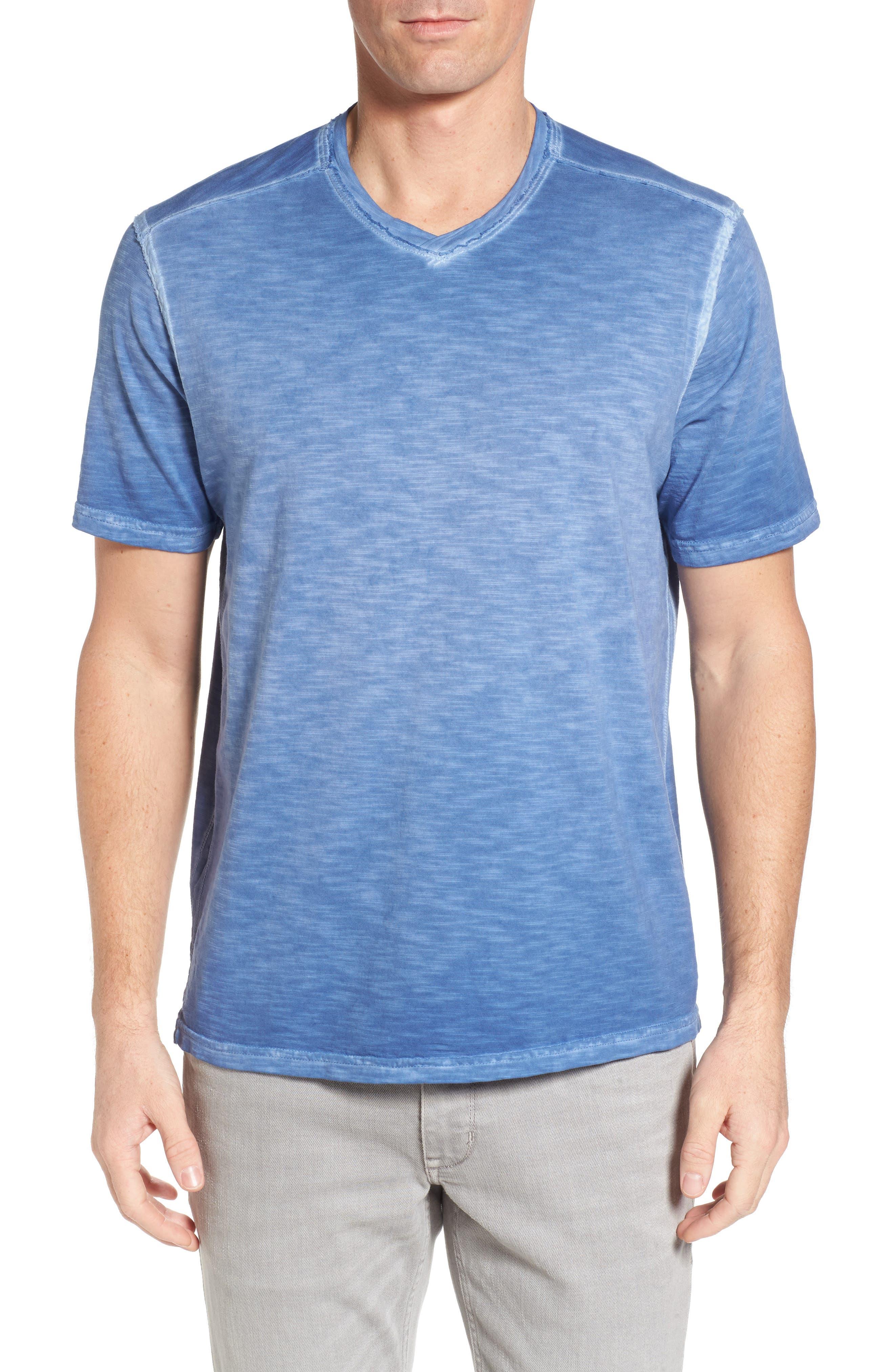 Suncoast Shores V-Neck T-Shirt,                         Main,                         color, Dockside Blue