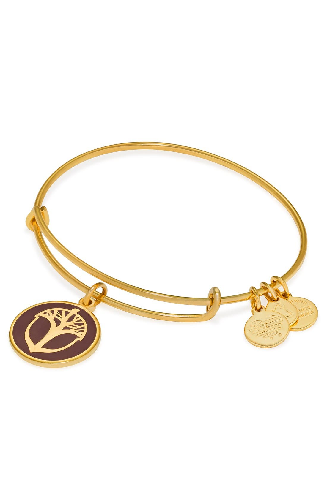 Alternate Image 3  - Alex and Ani 'Unexpected Miracles' Expandable Bangle