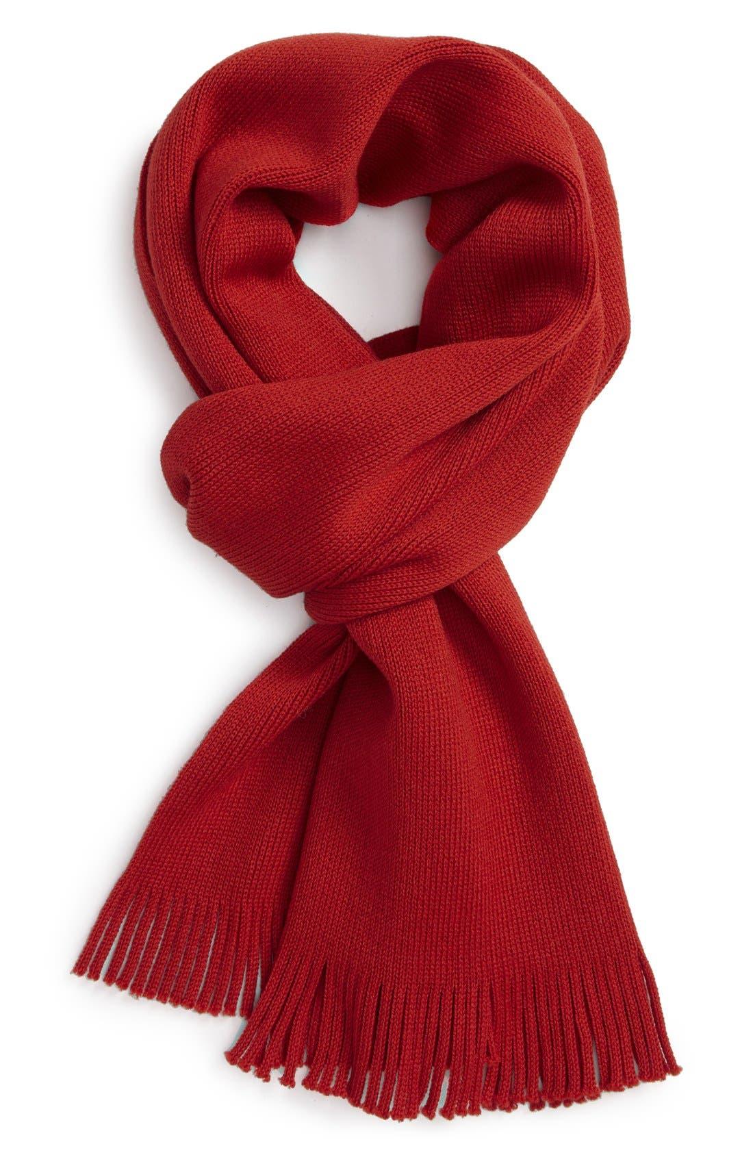 Alternate Image 4  - BOSS HUGO BOSS 'Albas' Wool Scarf