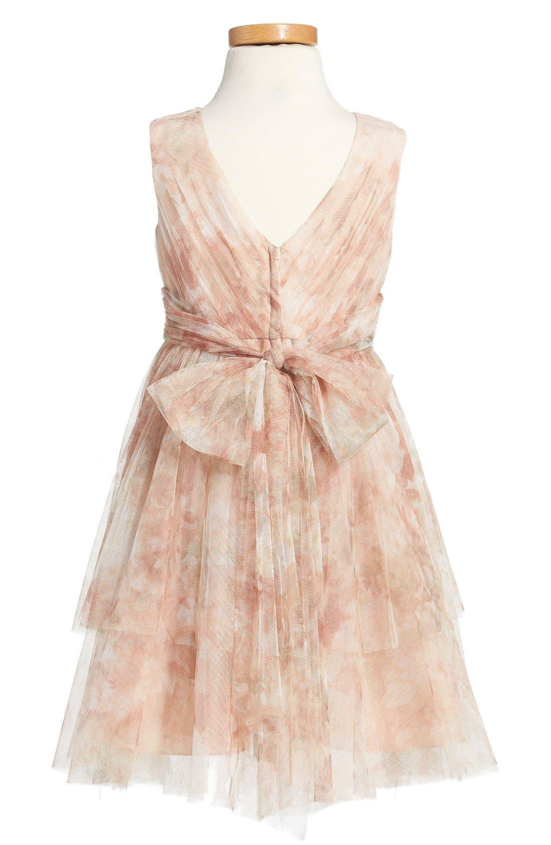 Etsy - Vintage Floral Tulle Dress,                             Alternate thumbnail 2, color,                             Blush Multi