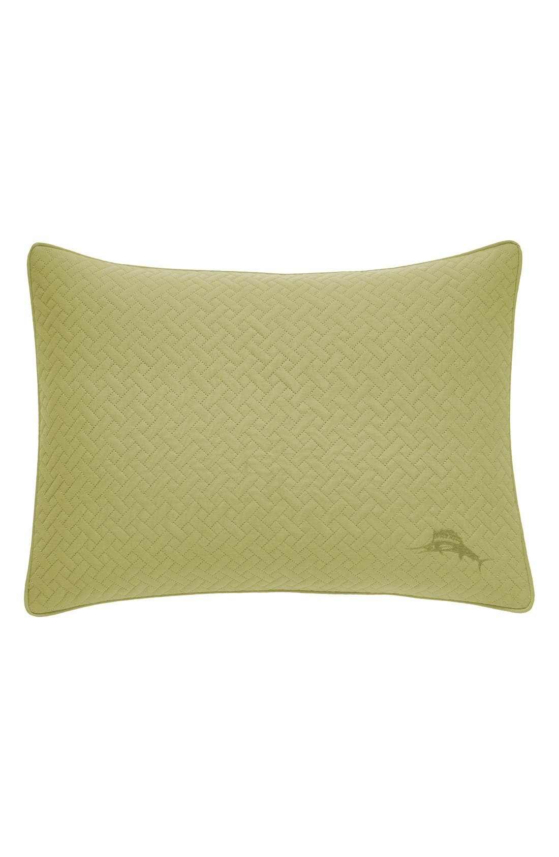 'Kiwi' Pillow,                         Main,                         color, Seaglass