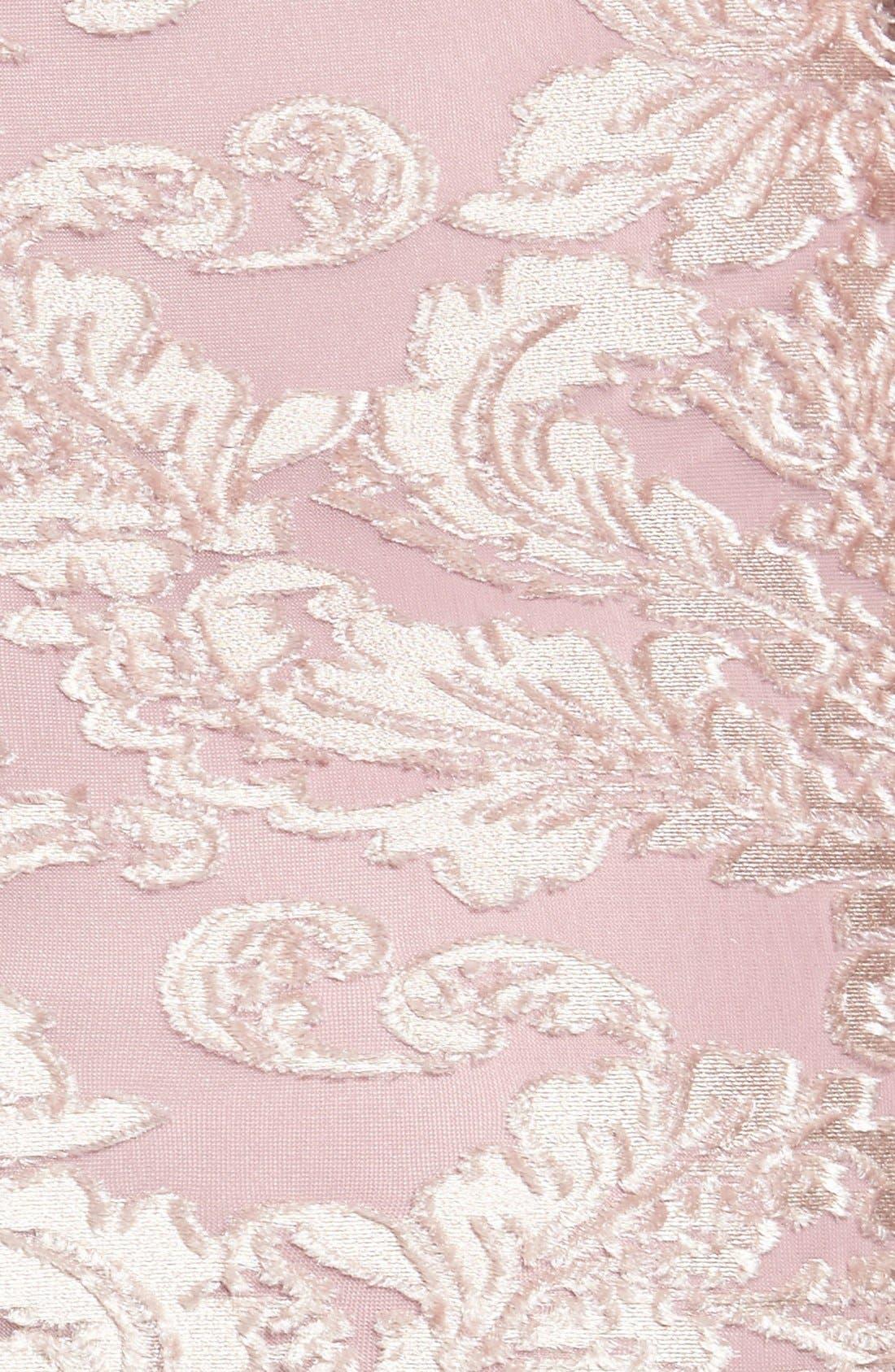 Alternate Image 5  - Leith Floral Velvet Dress