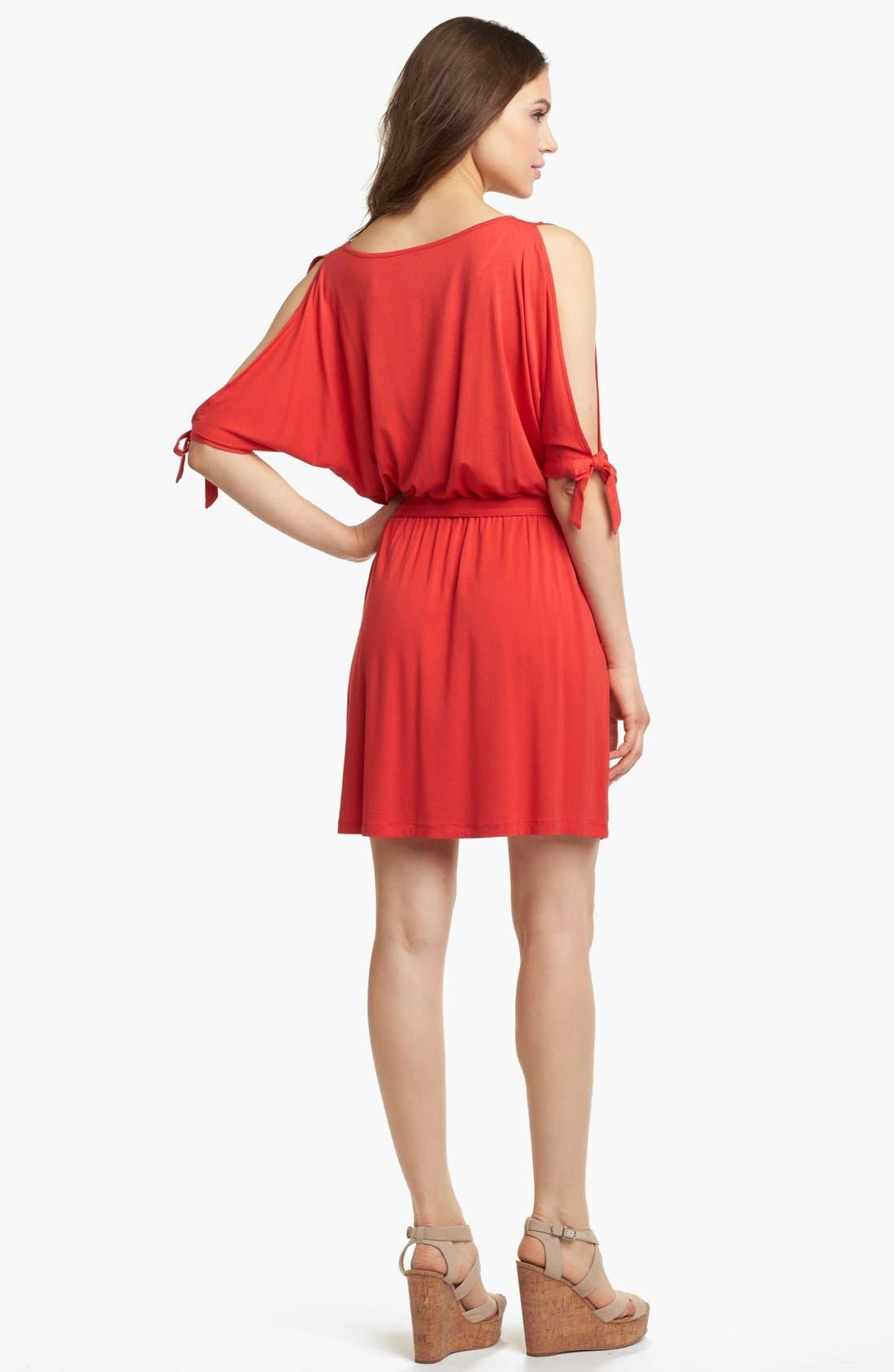 Alternate Image 2  - Kensie Cold Shoulder Dress