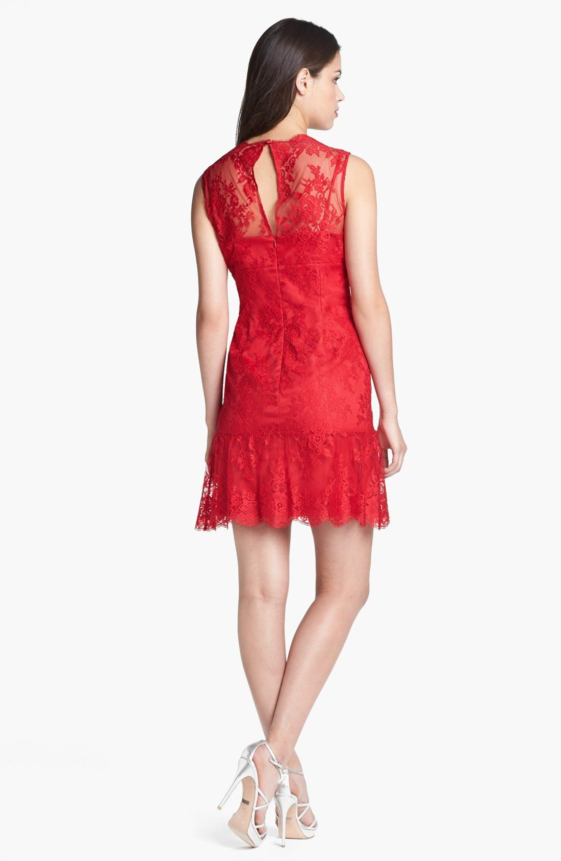 Alternate Image 2  - Adrianna Papell Chantilly Lace Dress