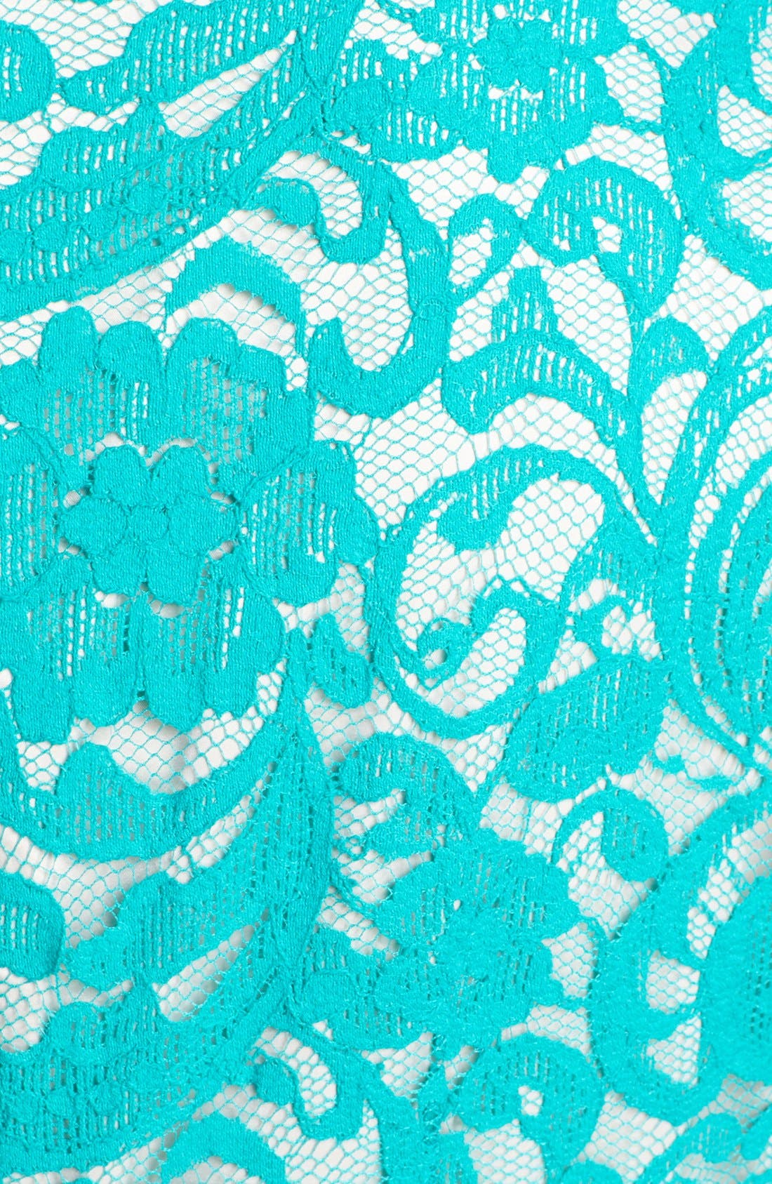 Alternate Image 3  - Eliza J Lace Fit & Flare Dress (Plus Size)