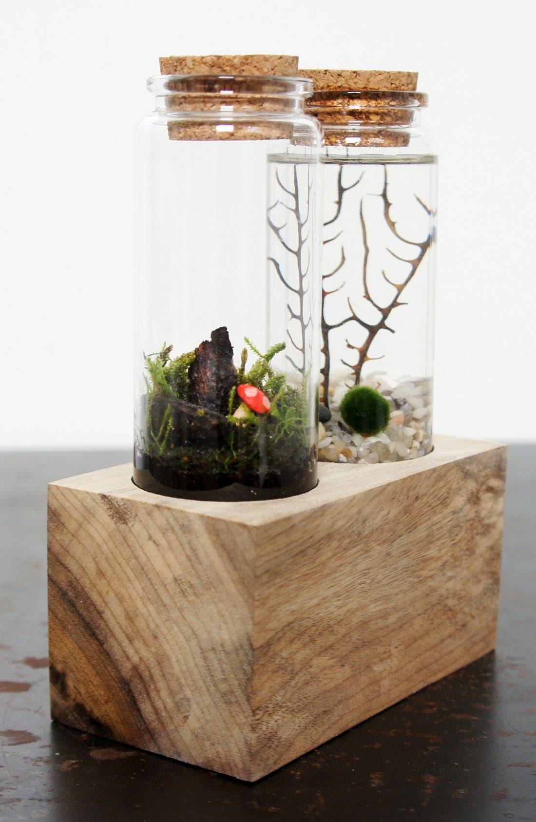 Alternate Image 4  - Moss + Twigg Land & Sea Terrarium Set