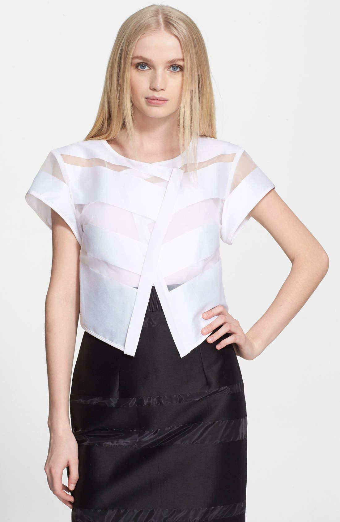 Alternate Image 1 Selected - Milly Sheer Stripe Fil Coupe Crop Top