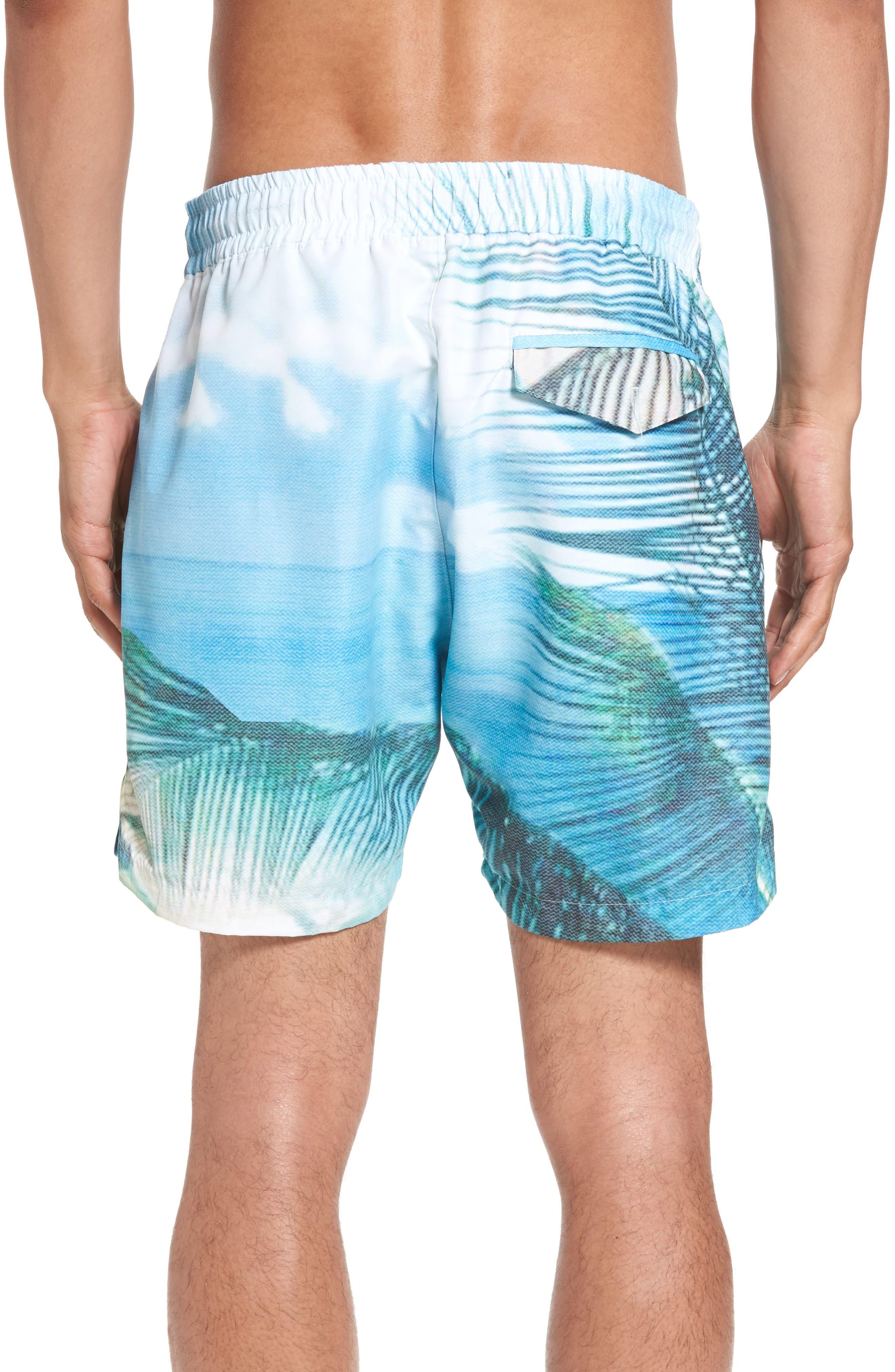 Alternate Image 2  - Sol Angeles Quintana Print Swim Trunks