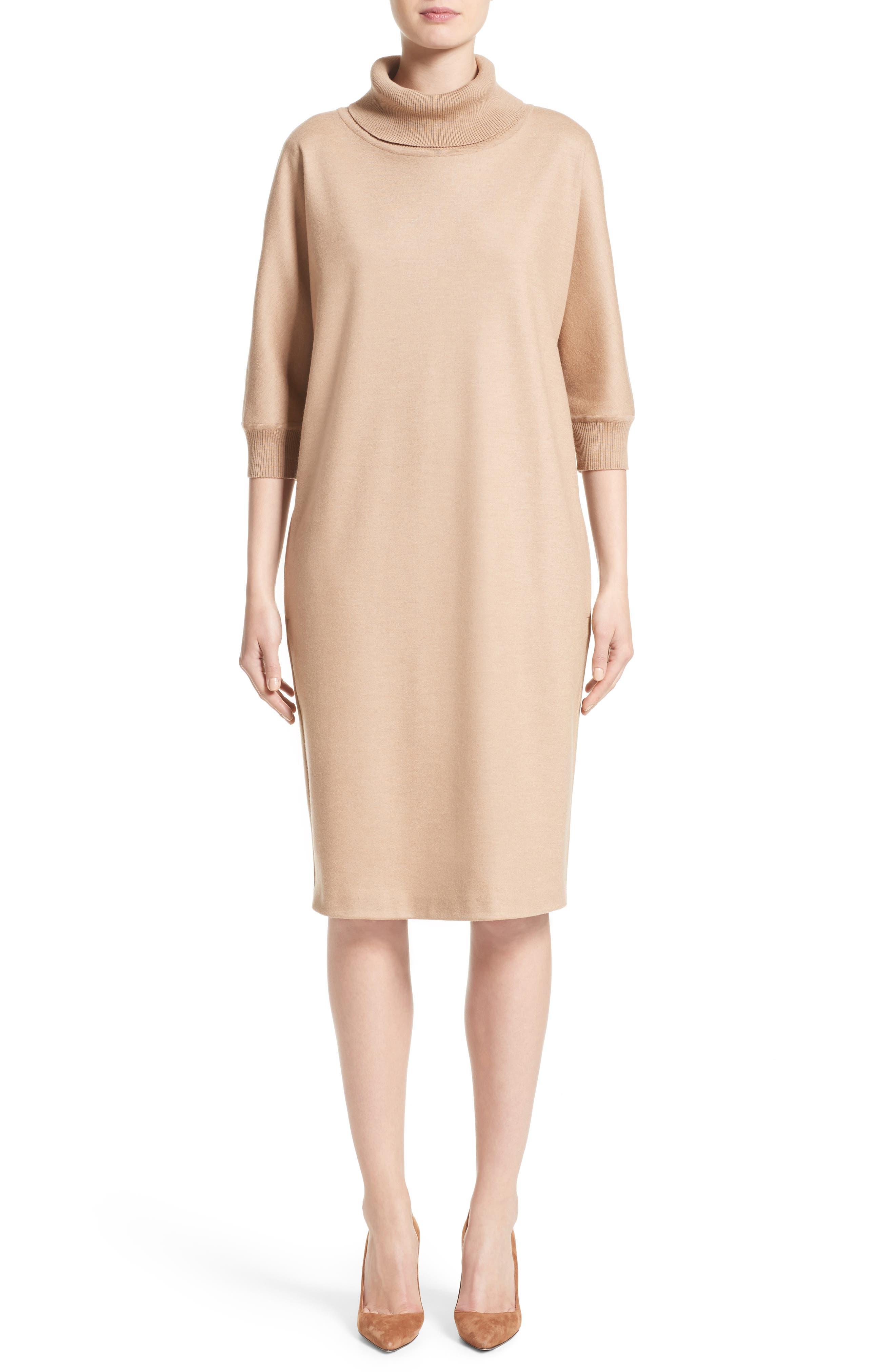 Max Mara Agro Wool Turtleneck Dress