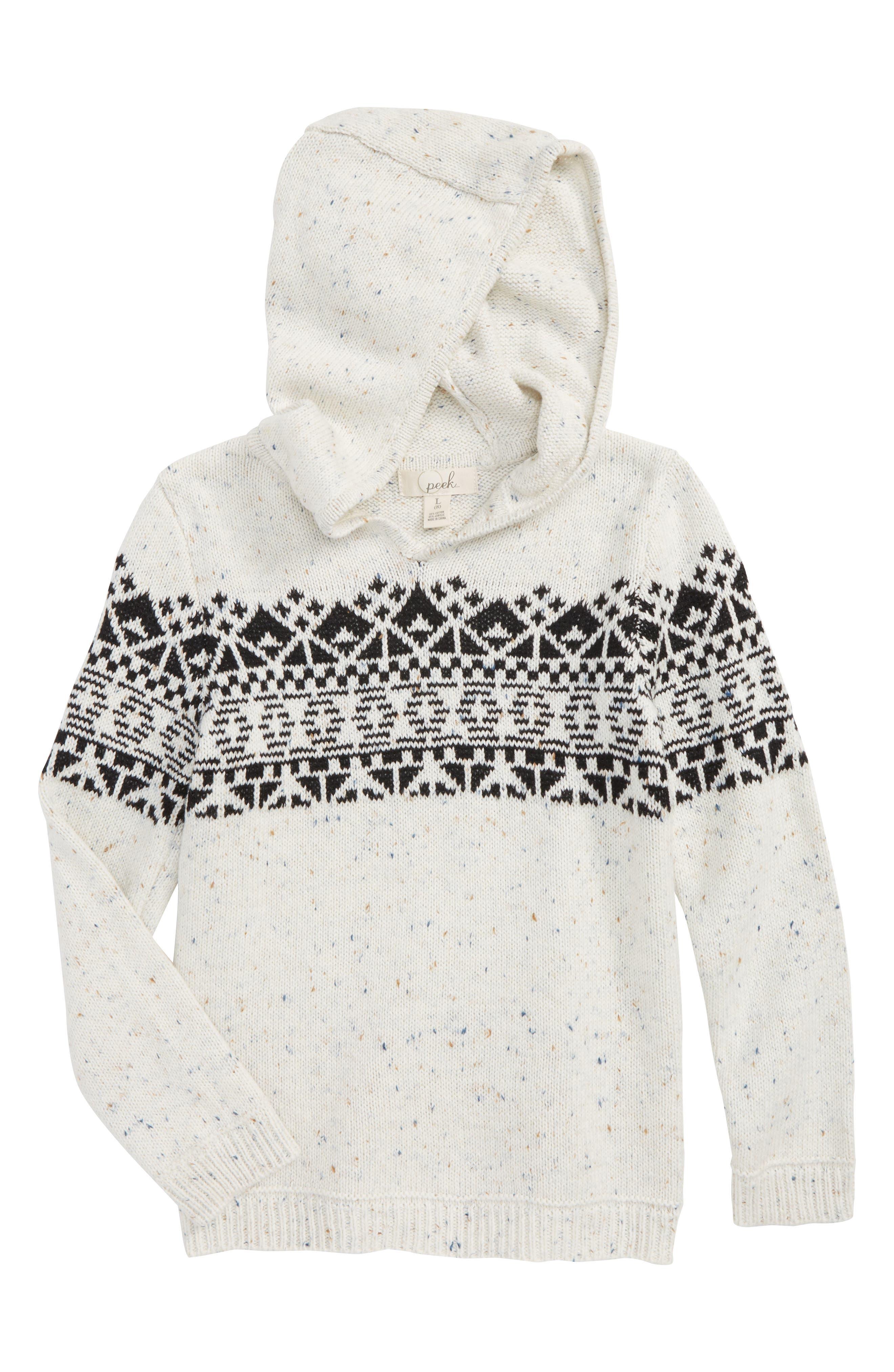 Peek Benny Hooded Knit Sweater (Toddler Boys, Little Boys & Big Boys)