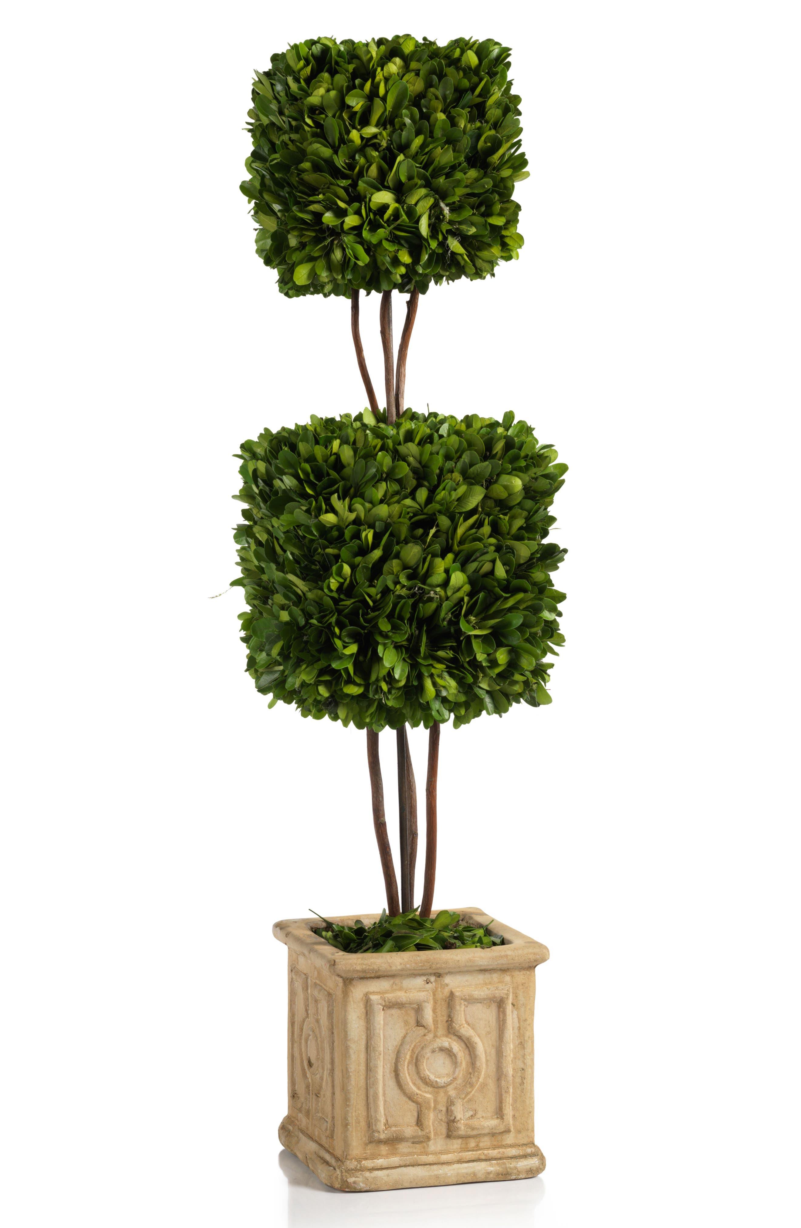 Cinza Boxwood Topiary Decoration,                             Main thumbnail 1, color,                             Green