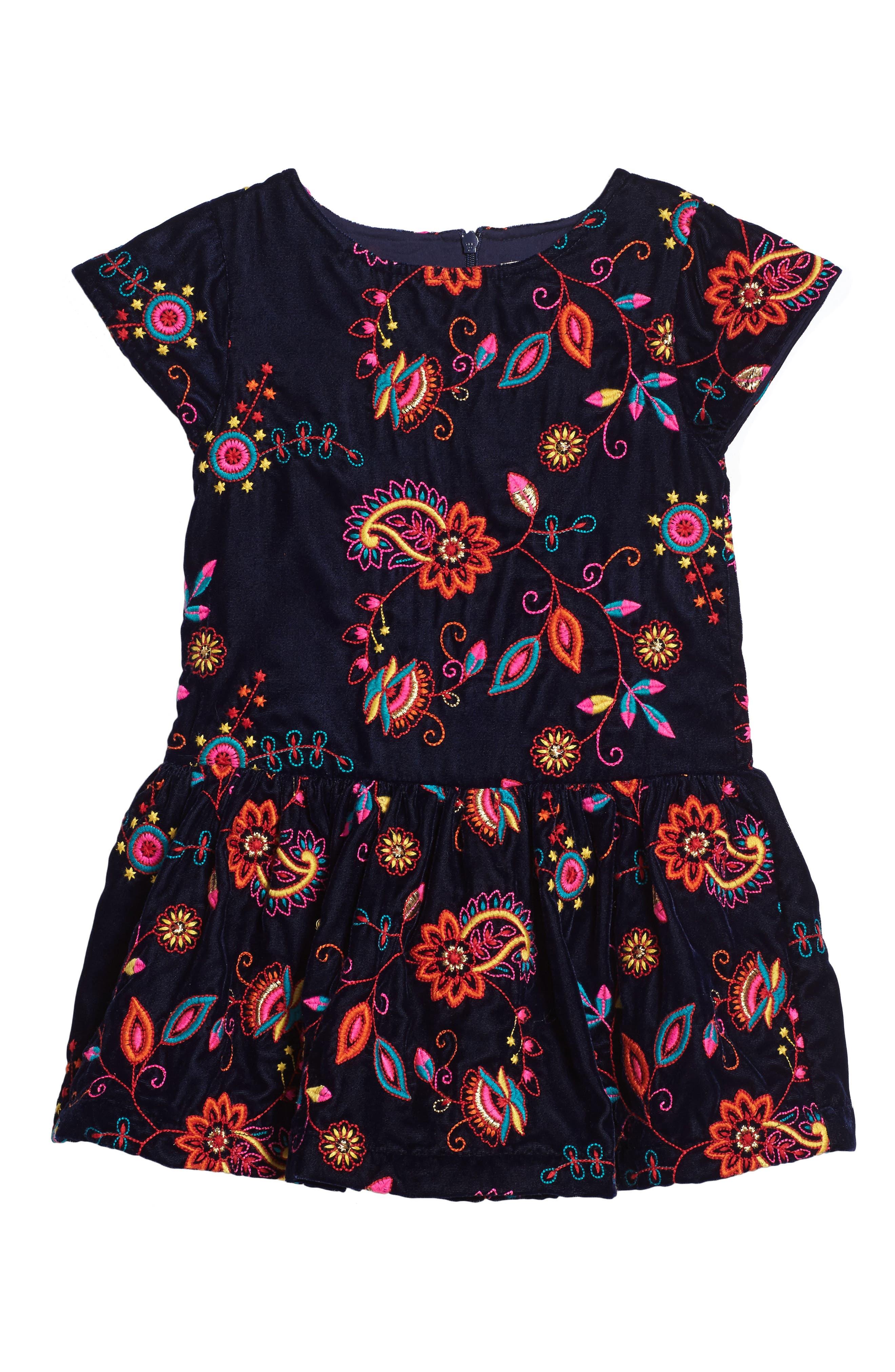 Kara Embroidered Velvet Dress,                         Main,                         color, Navy
