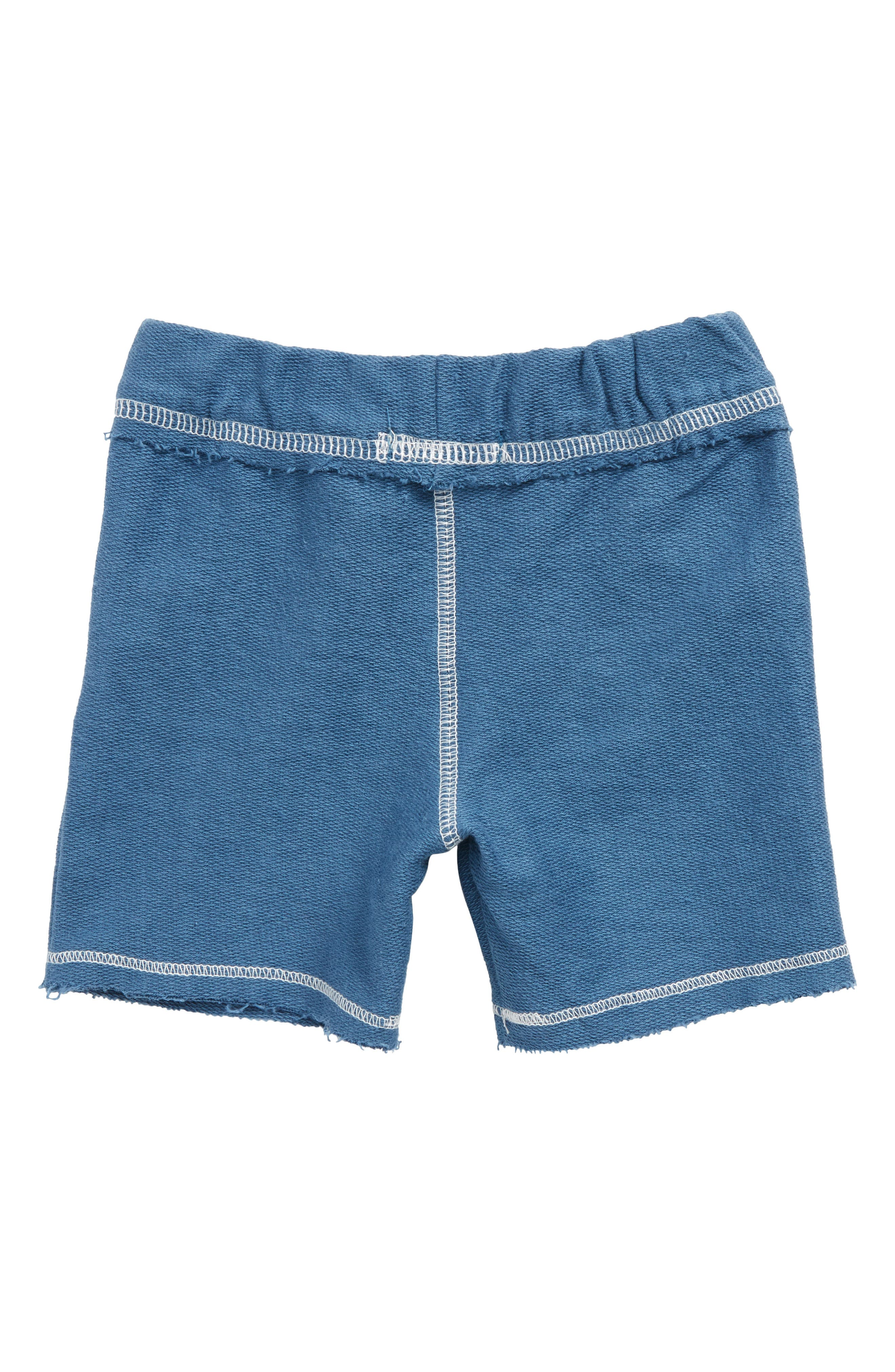 Organic Cotton French Terry Shorts,                             Alternate thumbnail 2, color,                             Blue Star