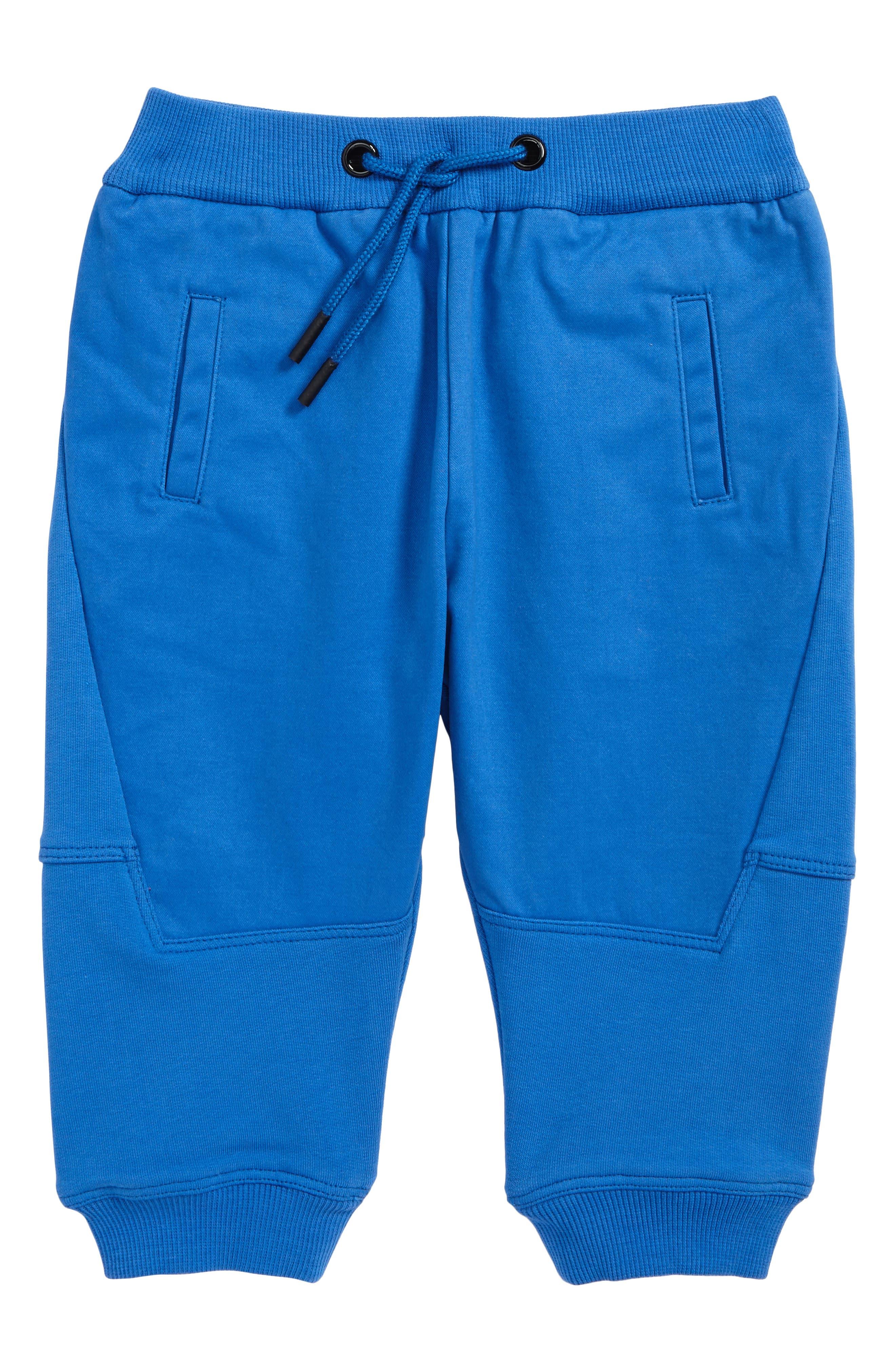 Jogger Pants,                         Main,                         color, Royal Blue