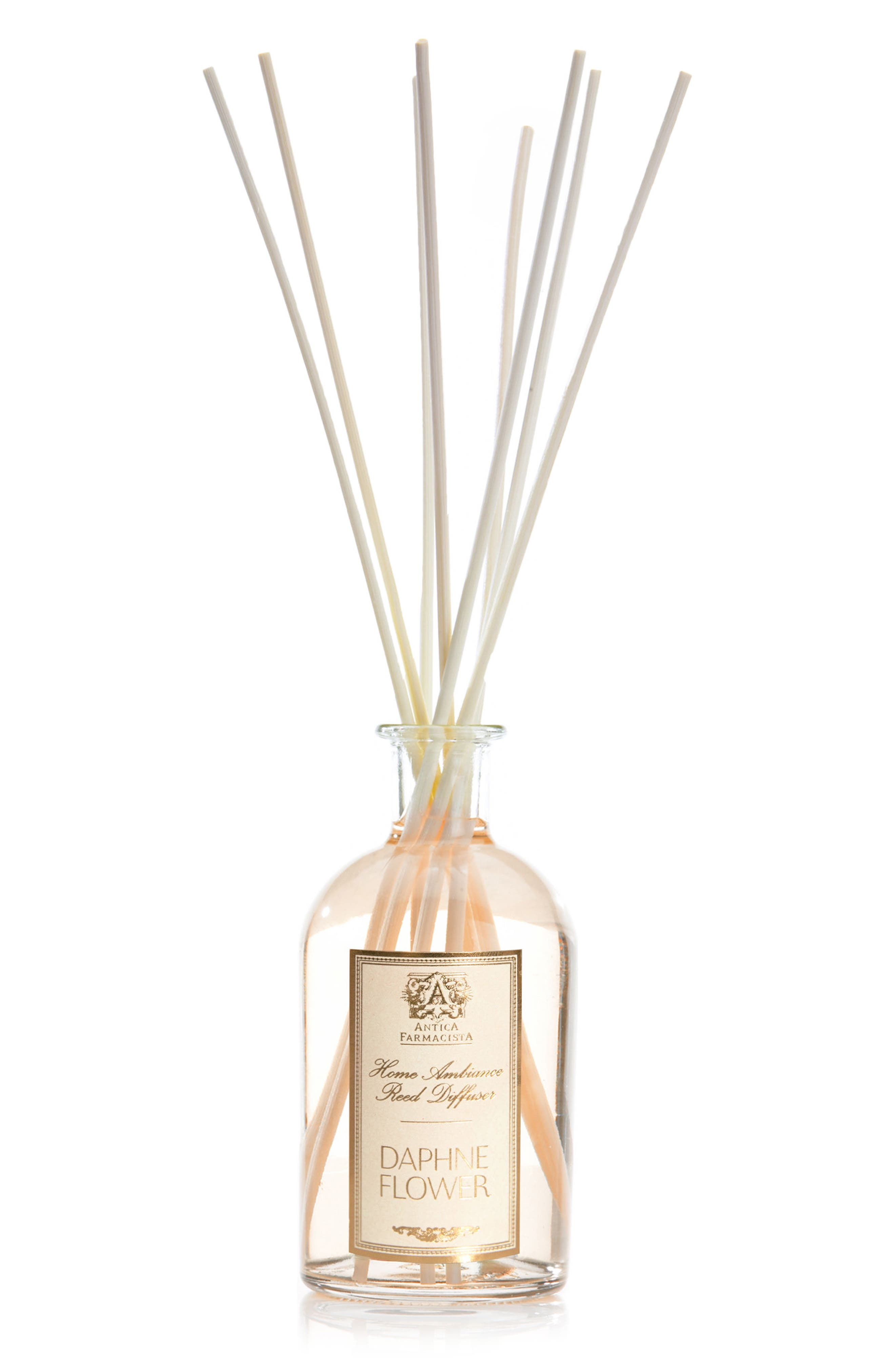 Daphne Flower Home Ambiance Diffuser,                             Main thumbnail 1, color,                             No Color