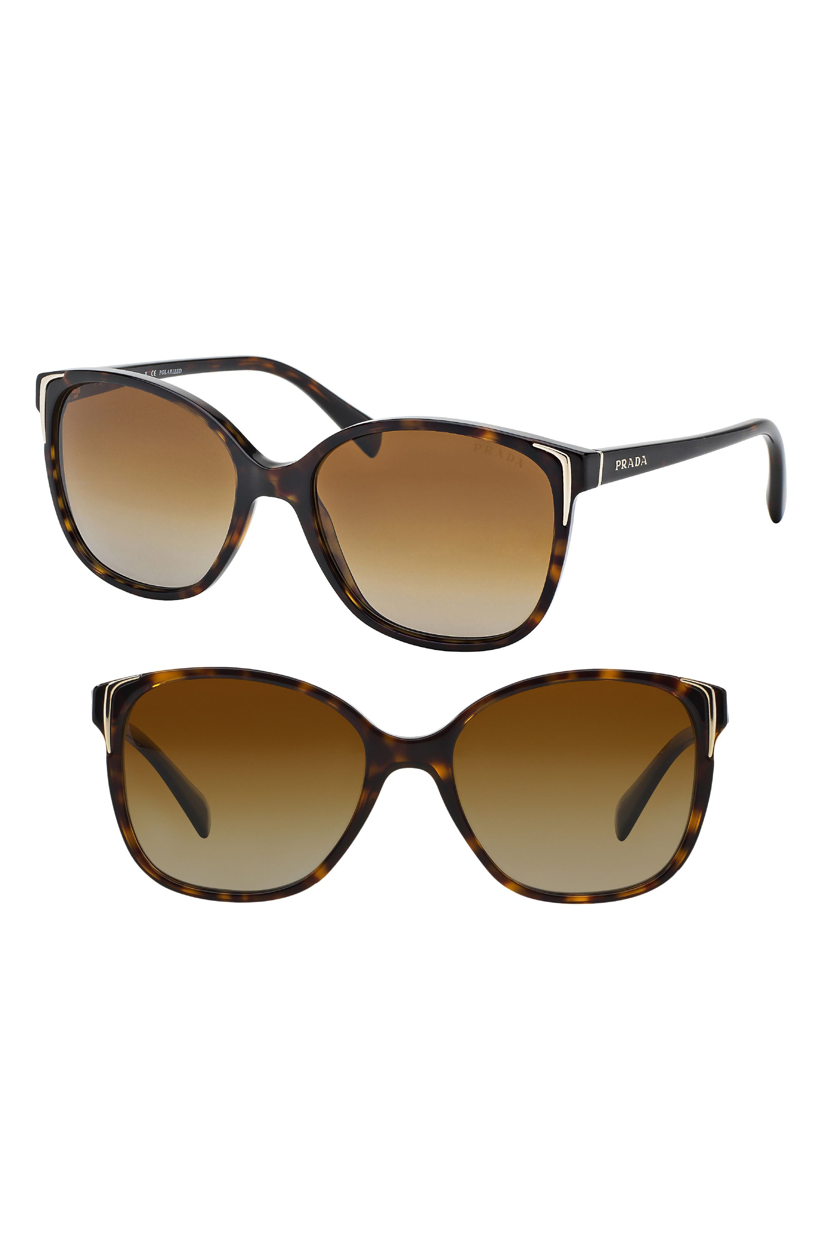 55mm Polarized Cat Eye Sunglasses,                             Main thumbnail 1, color,                             Havana